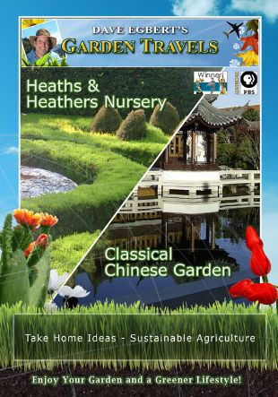 Garden Travels: Heaths & Heathers Nursery/Classical Chinese Garden