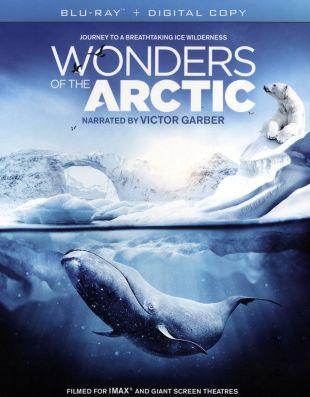 Wonders of the Arctic