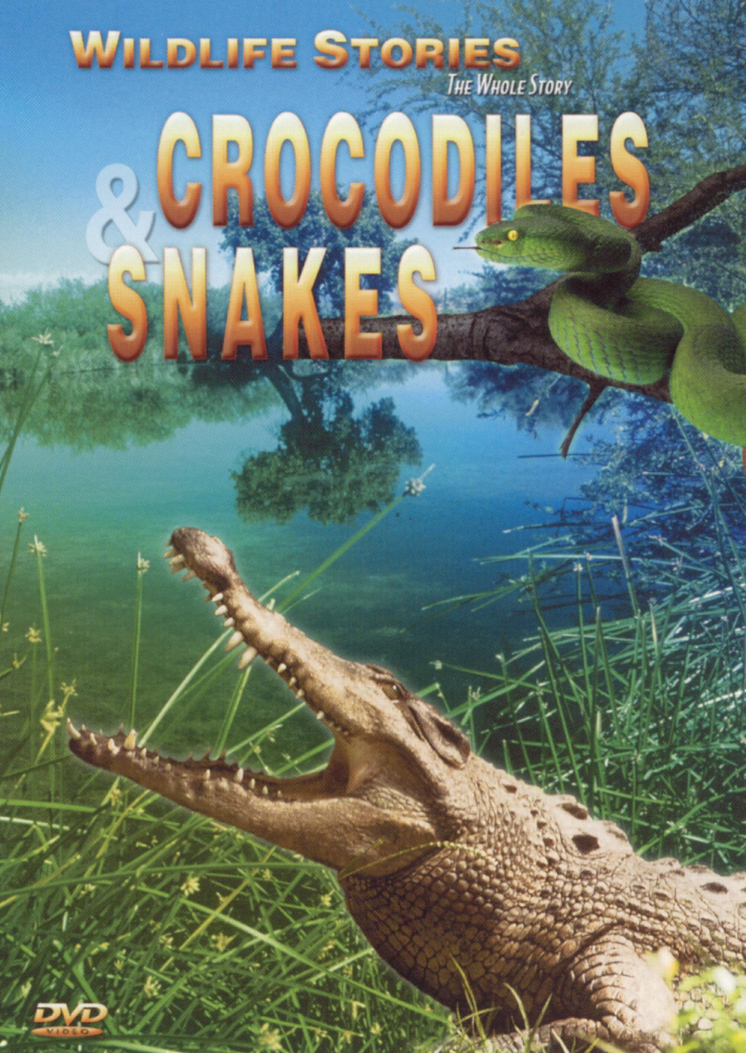 Wildlife Stories: The Whole Story - Crocodiles and Snakes
