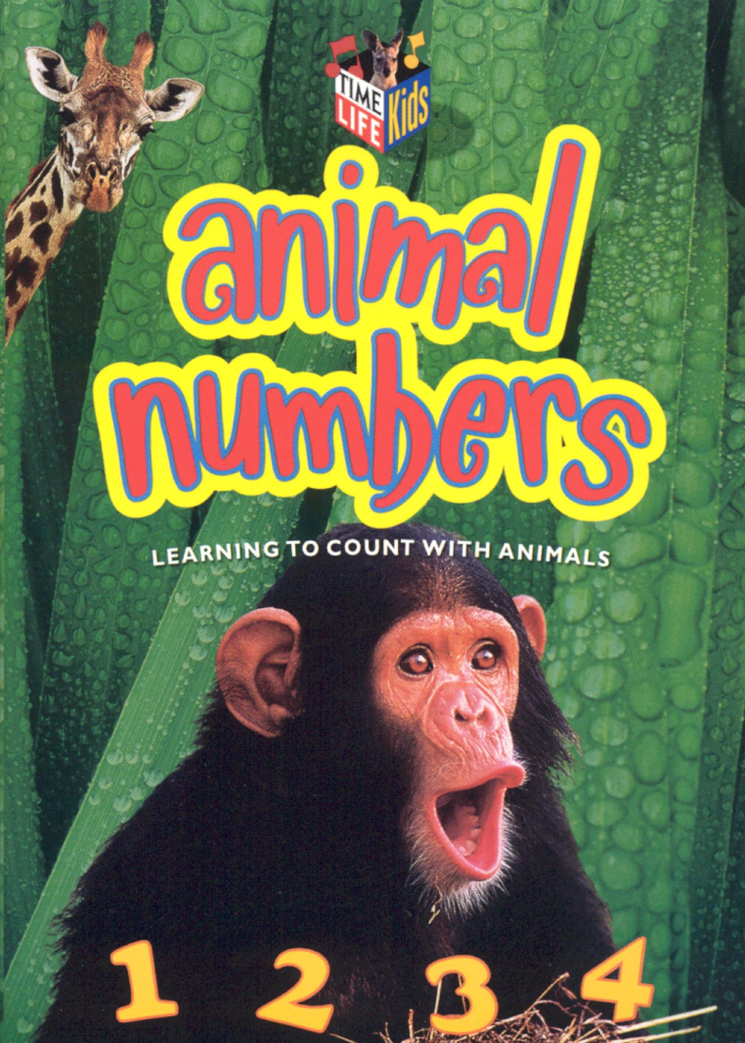 Animal Numbers: Learning to Count with Animals