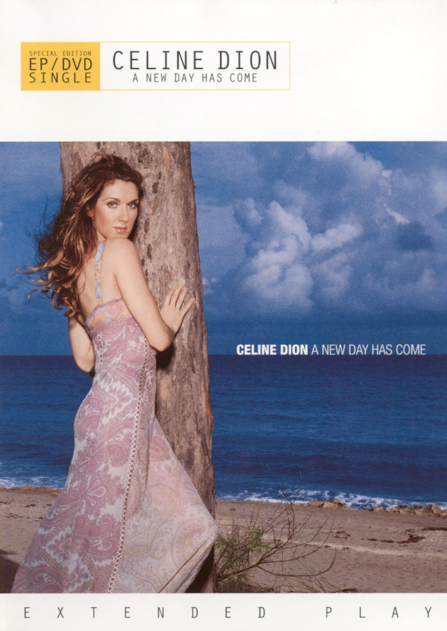 Celine Dion: A New Day Has Come  [DVD Single]