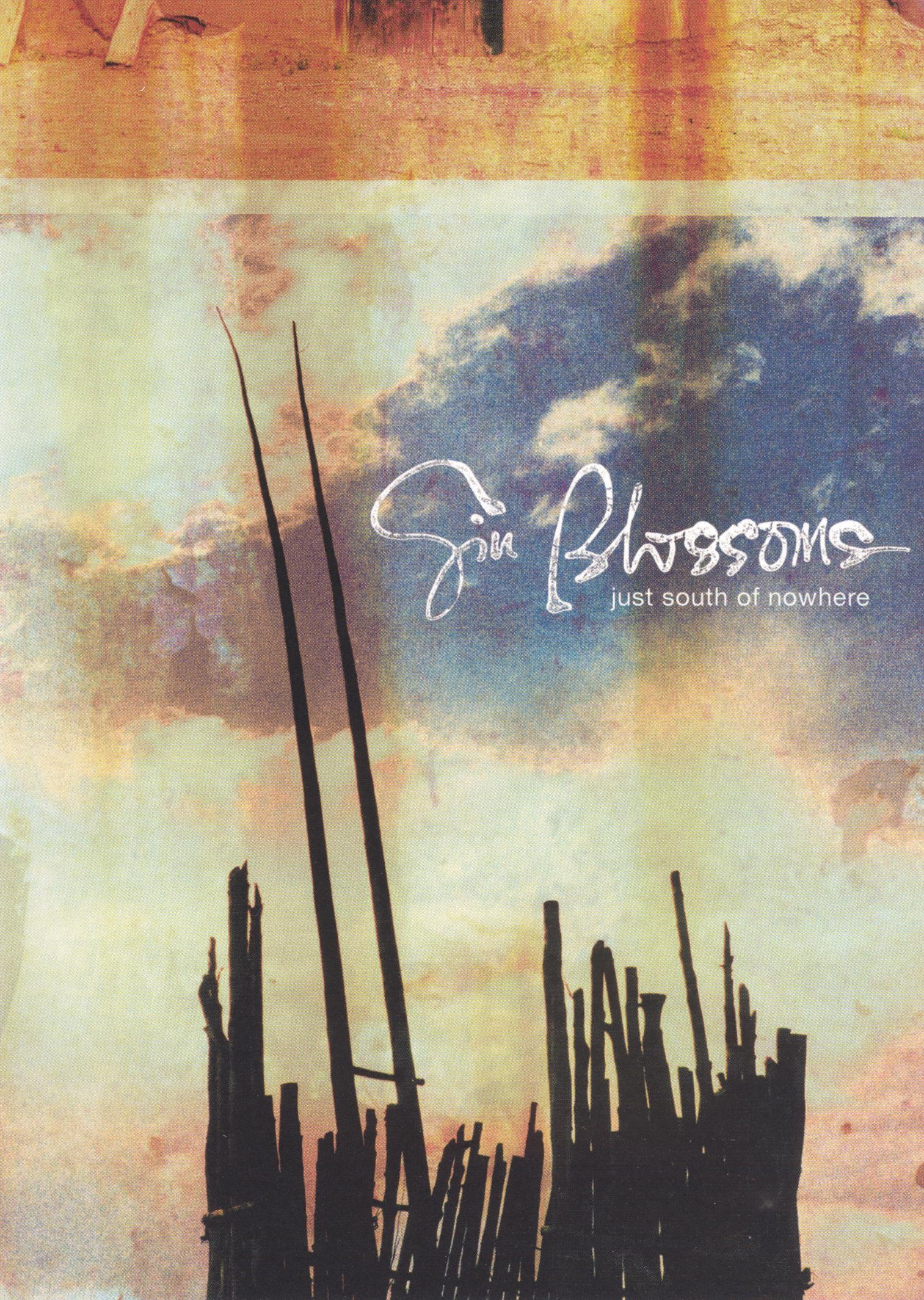 The Gin Blossoms: Just South of Nowhere