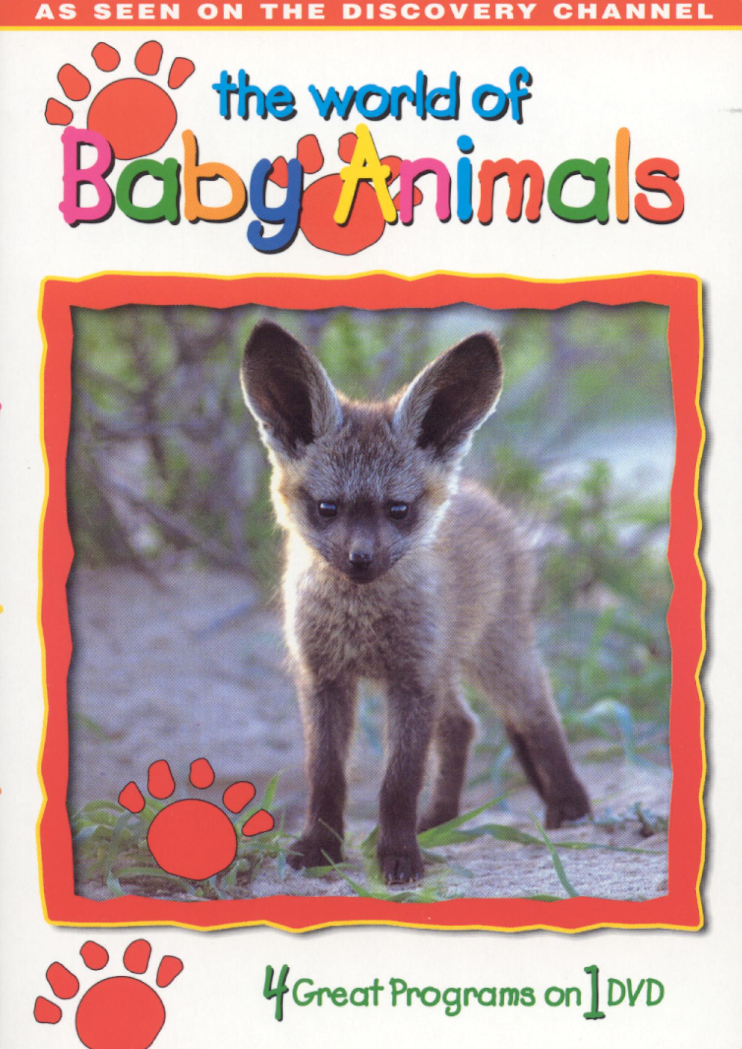 World of Baby Animals