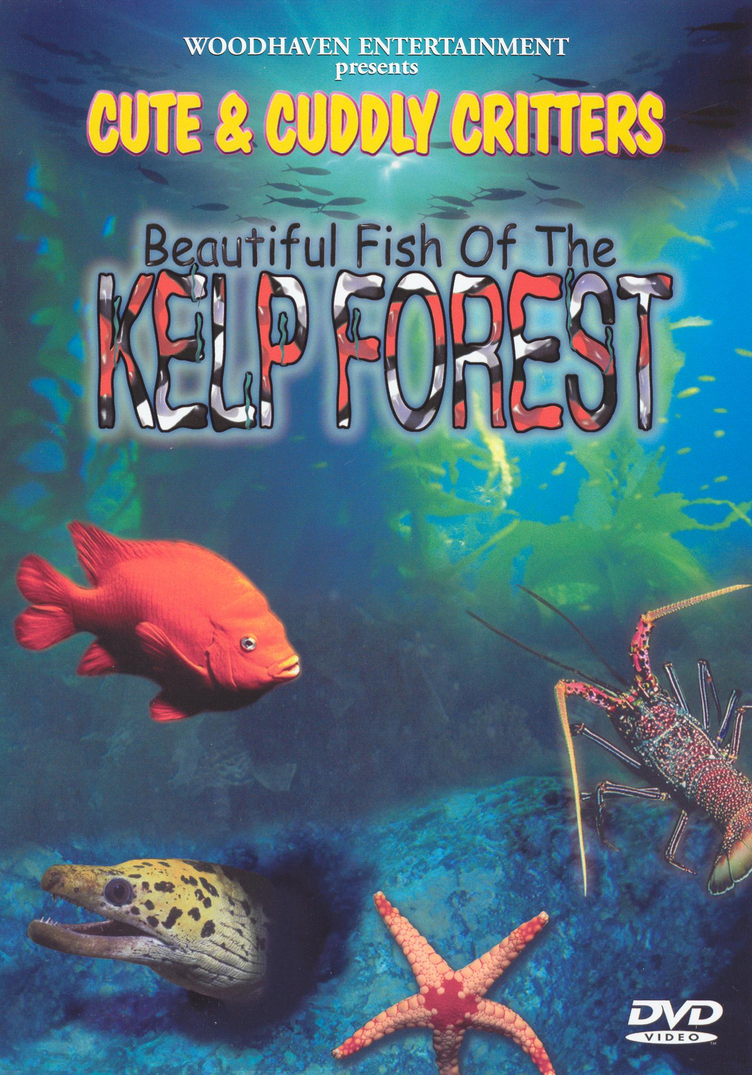 Cute and Cuddly Critters: Beautiful Fish of the Kelp Forest