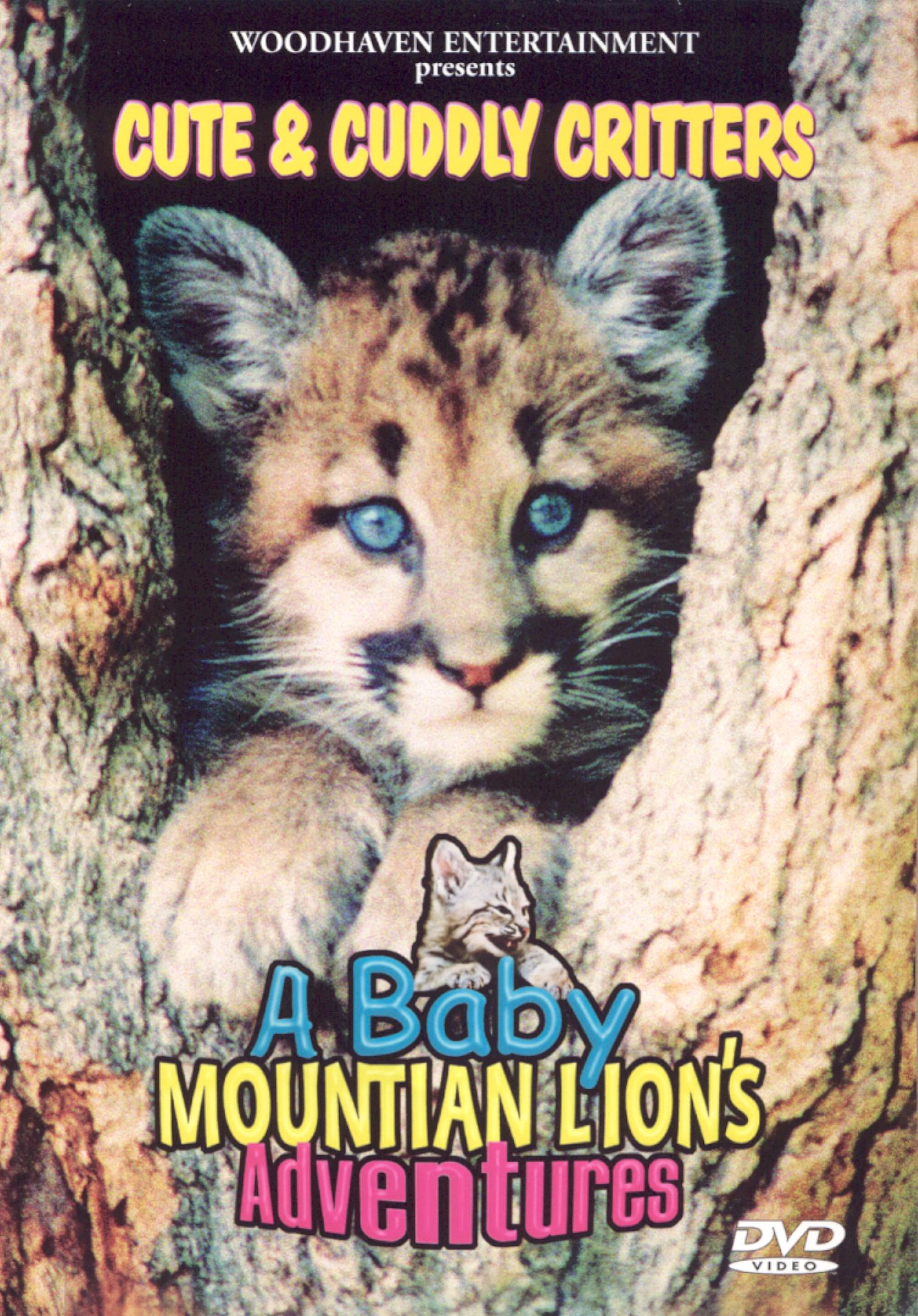 Cute and Cuddly Critters: A Baby Mountain Lion's Adventures