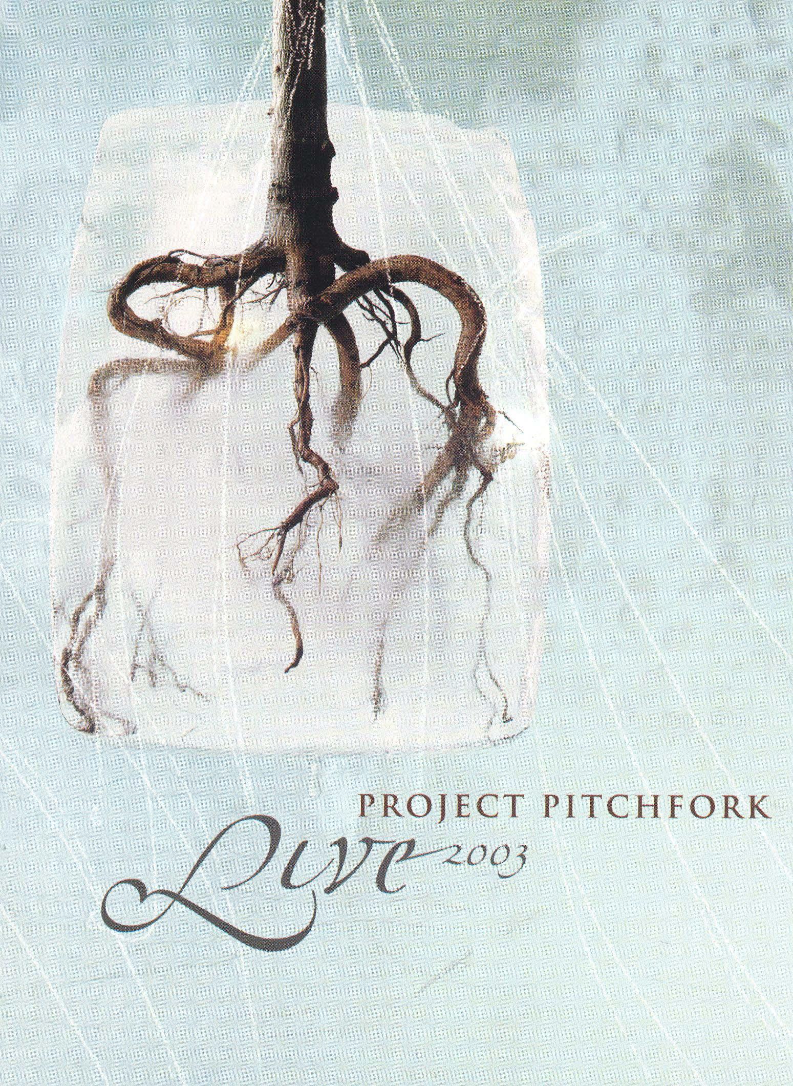 Project Pitchfork: Live 2003