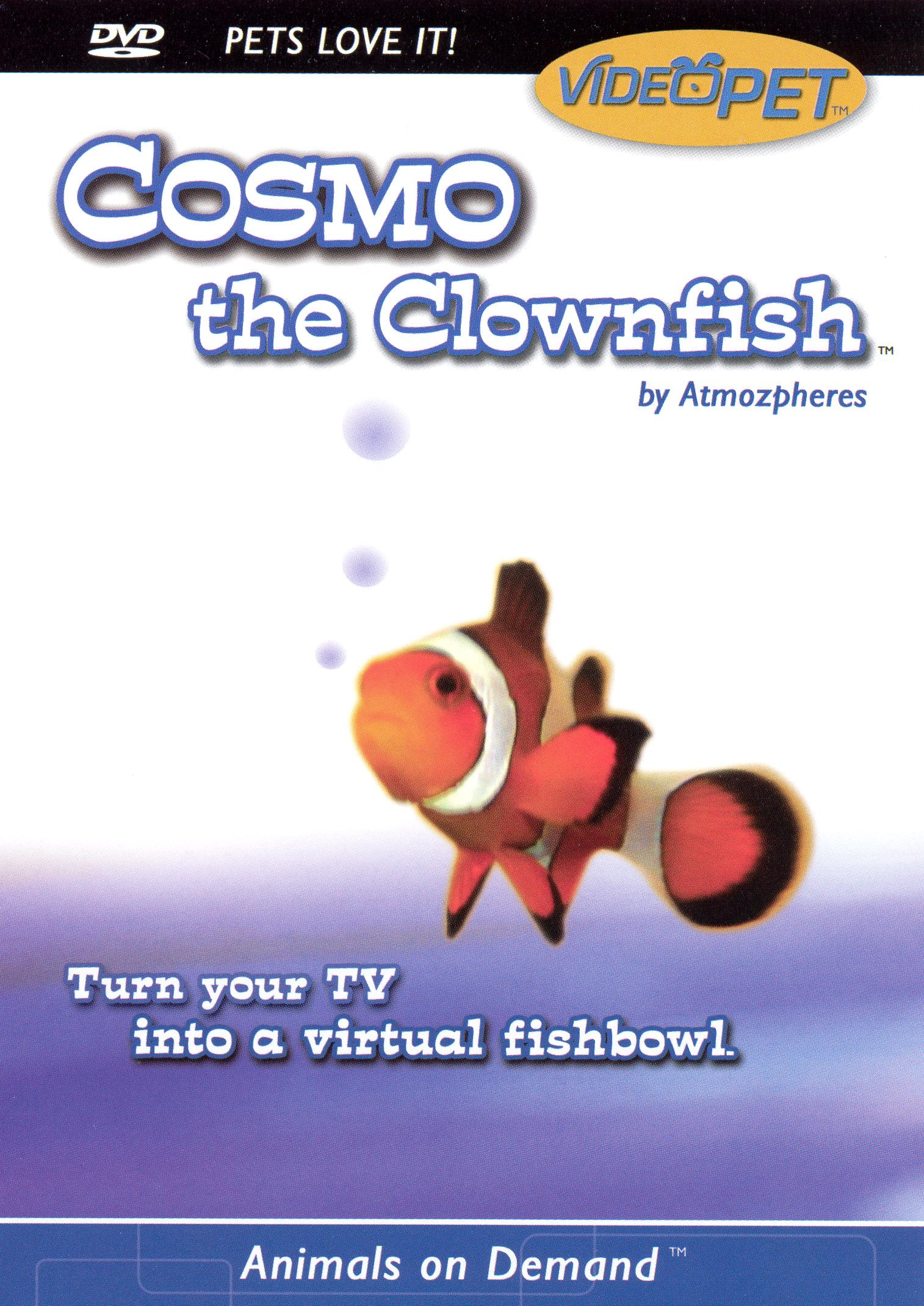 Animals On Demand: Cosmo the Clownfish By Atmozpheres