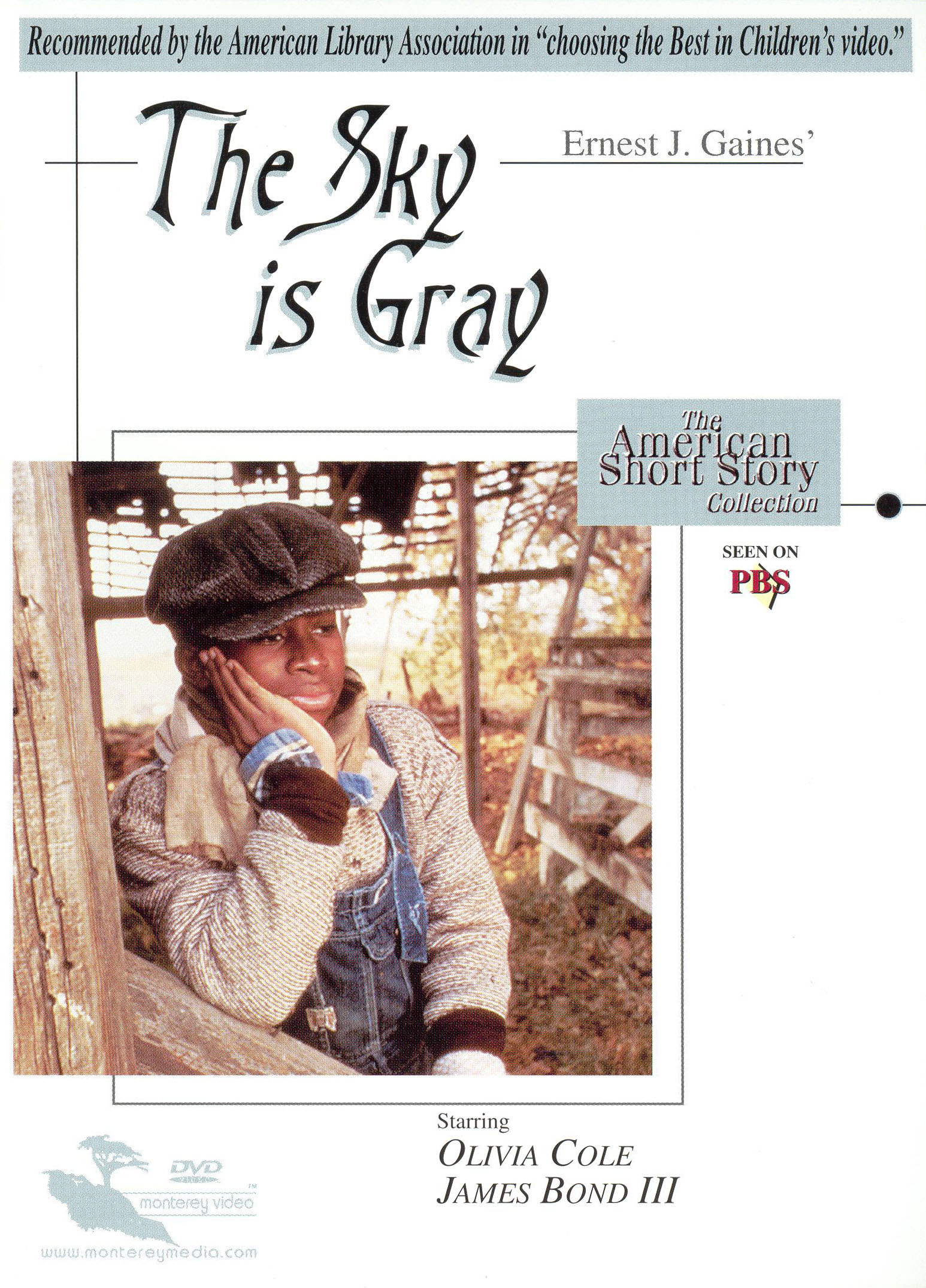analysis of the short story the sky is gray by african american author ernest j gaines Voices from the quarters: the fiction of ernest j gaines baton rouge: louisiana state up, 2002 xv + 245 pp ernest gaines's novels and stories have had broad exposure in american culture over the past thirty years, particularly through the notable films that have been made of several of his books and one of his short stories.
