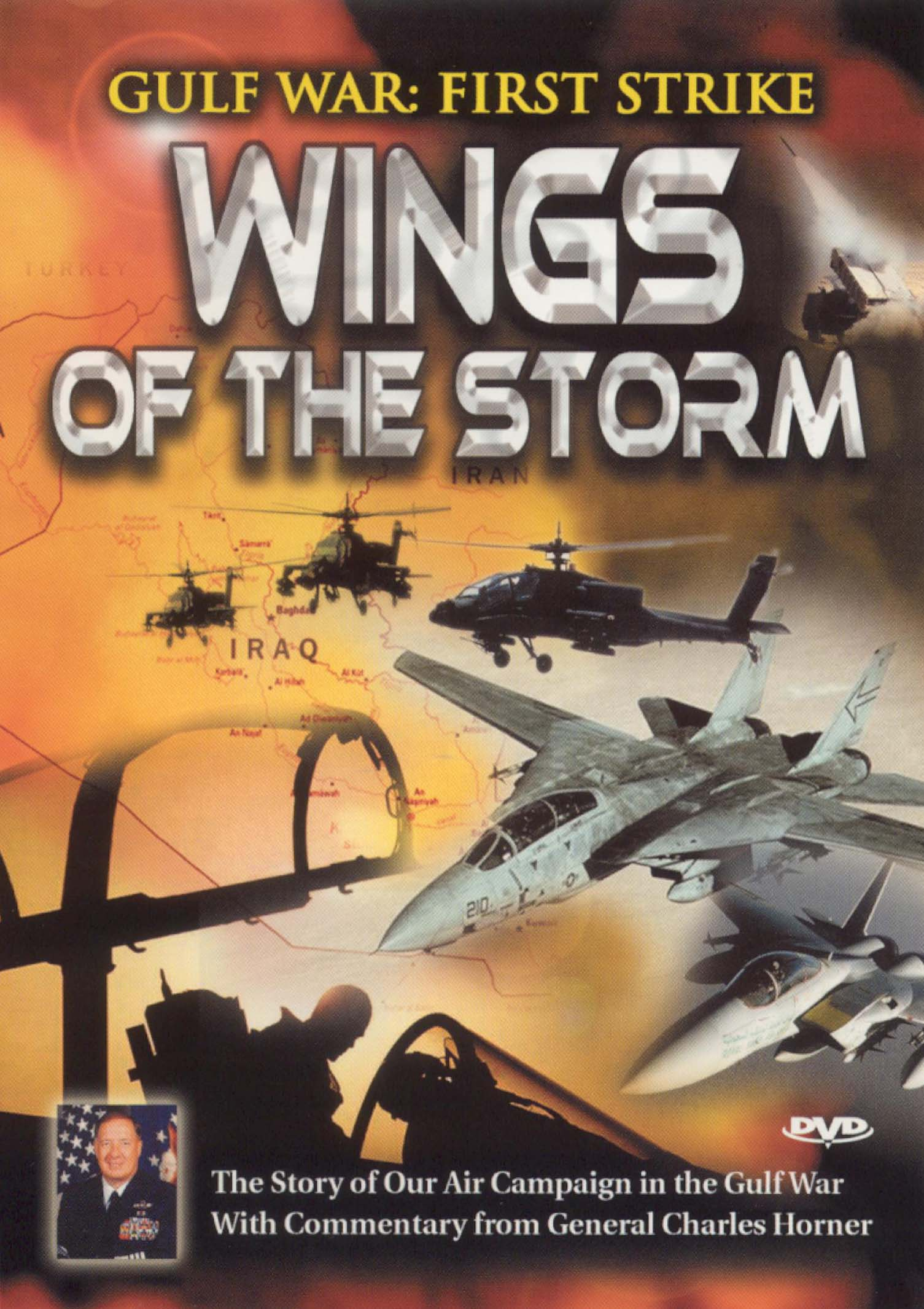 Gulf War: First Strike - Wings of the Storm