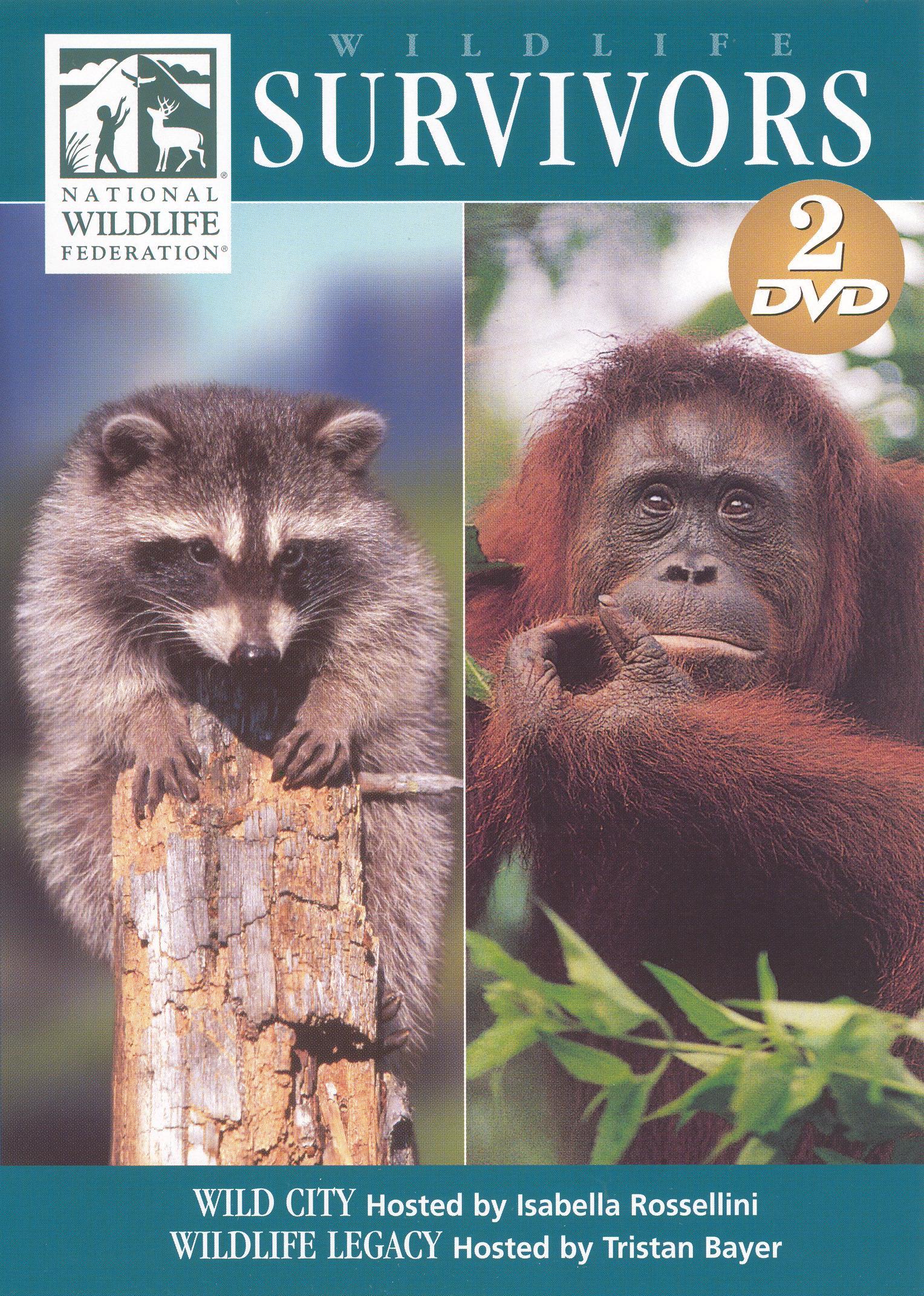 Wildlife Survivors: Wild City