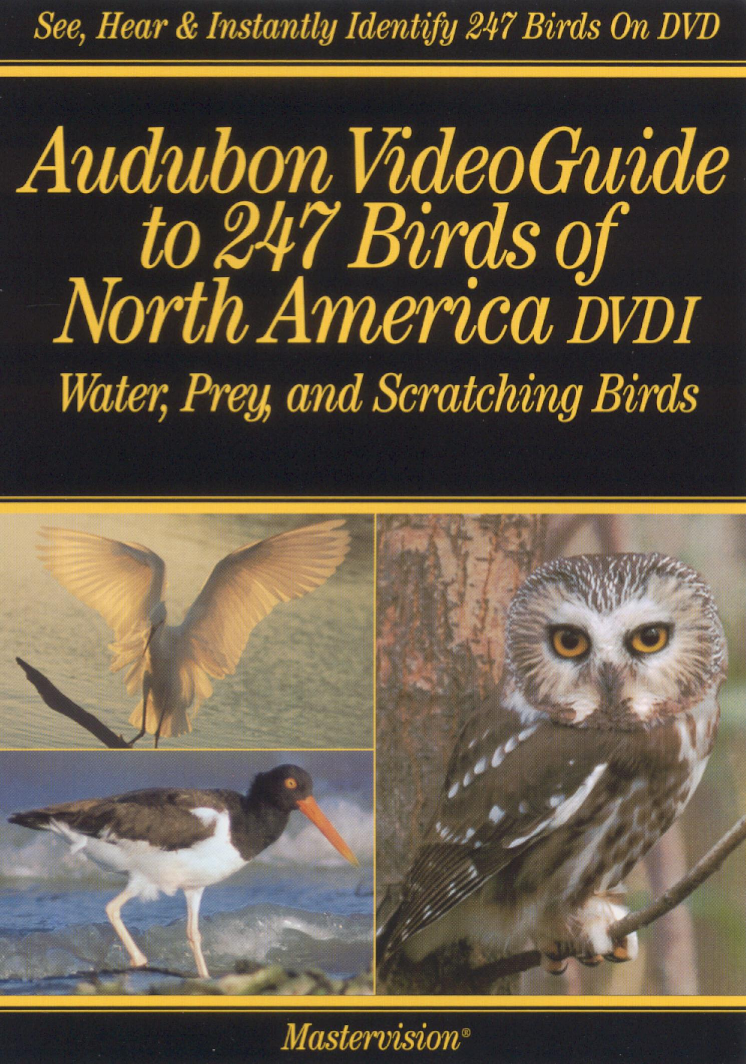 Audubon, Vol. 1: Video Guide to 247 Birds of North America