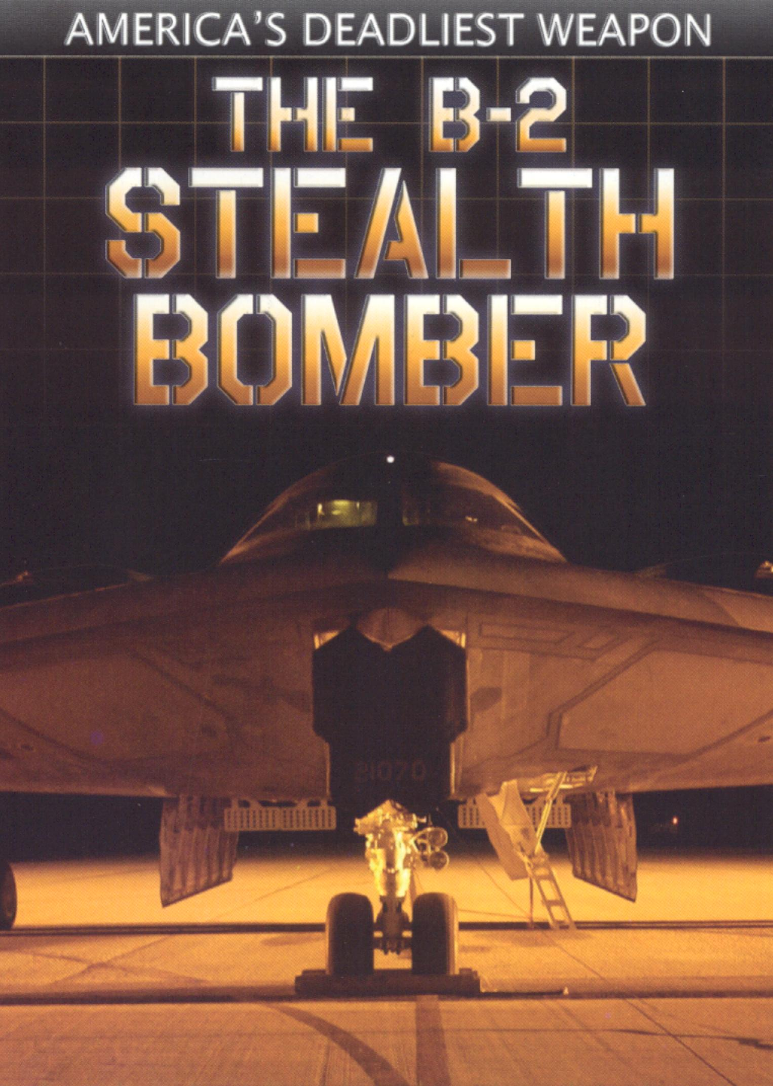 The B-2 Stealth Bomber