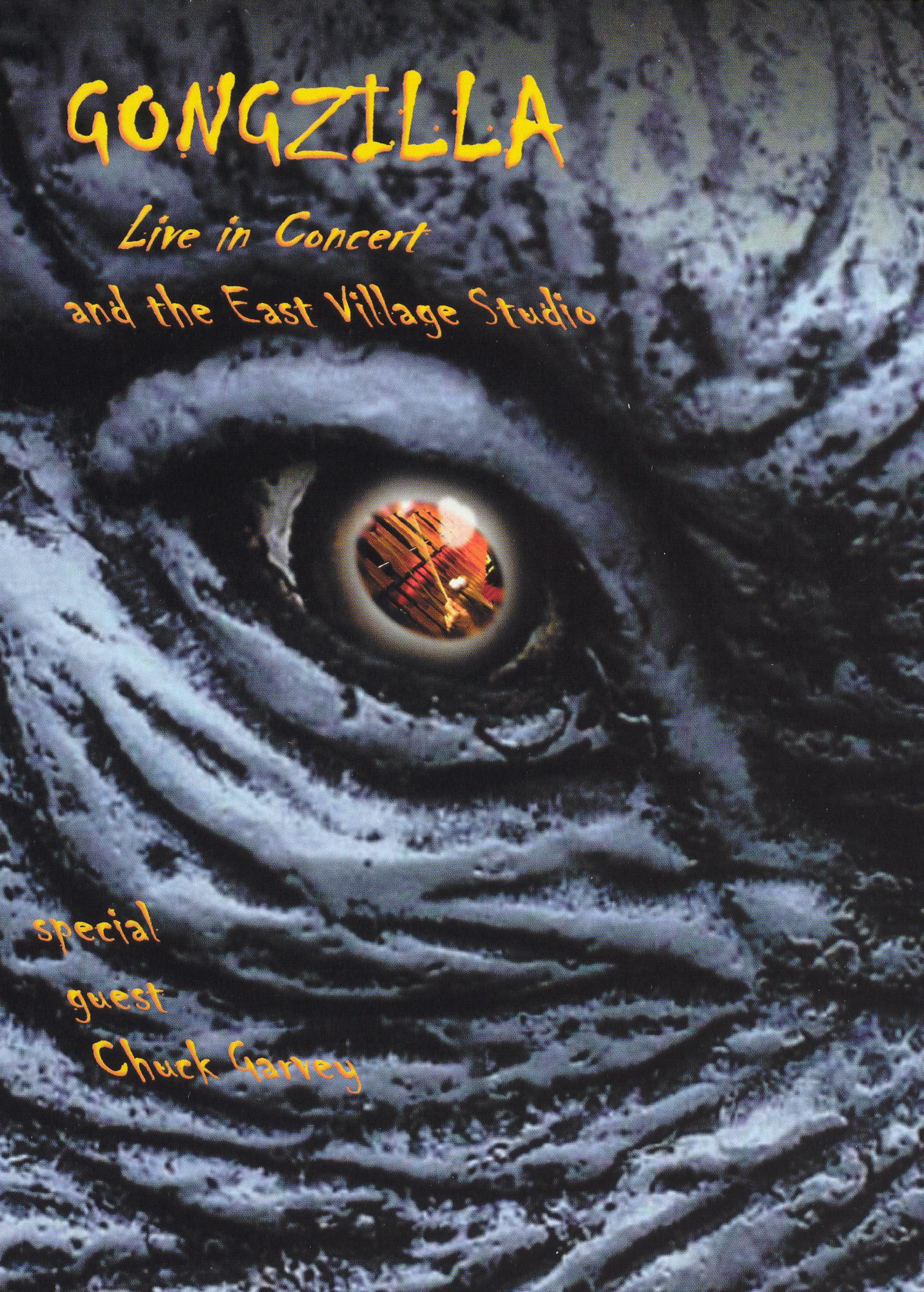Gongzilla: Live in Concert and the East Village Studio