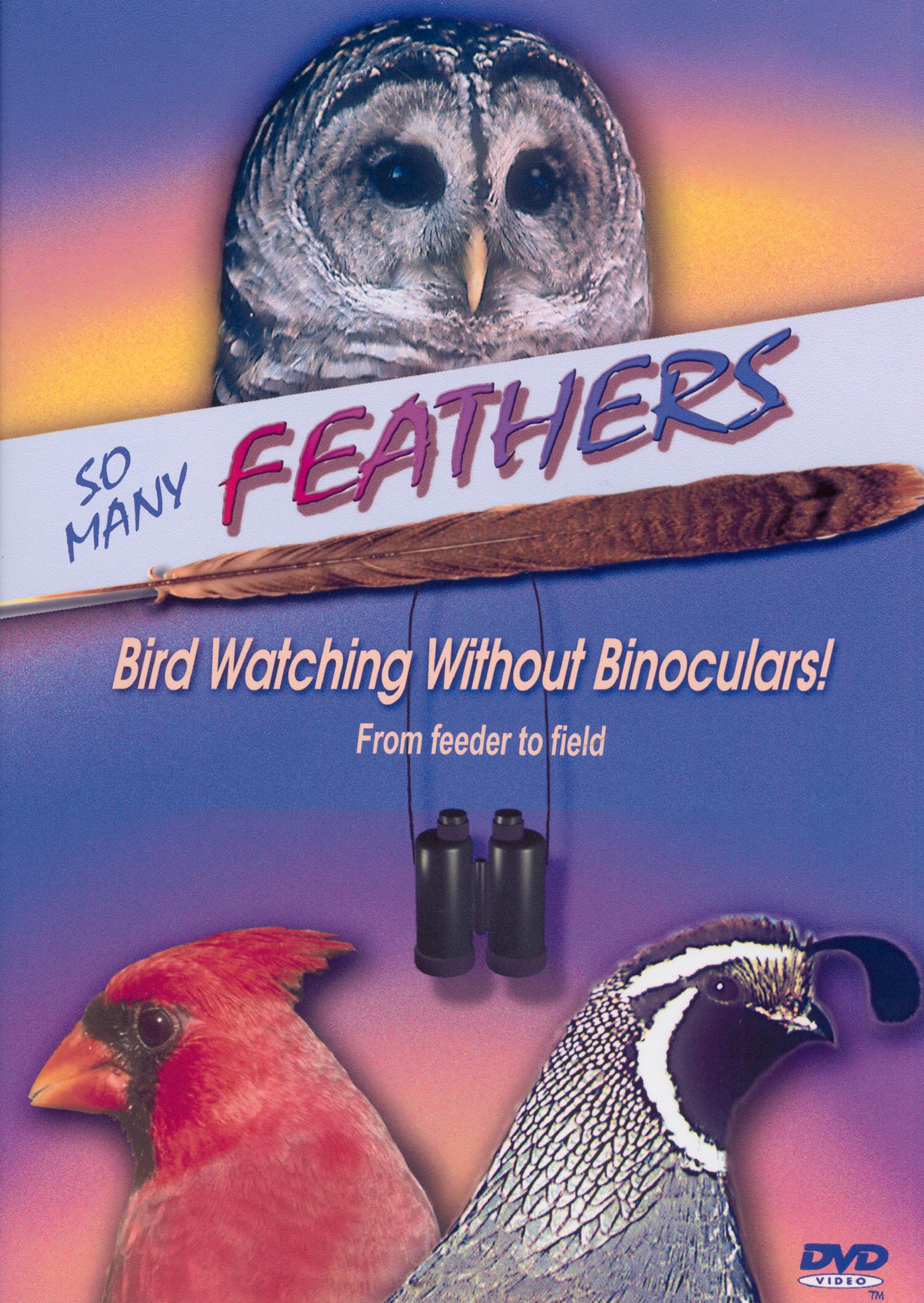So Many Feathers: Bird Watching Without Binoculars