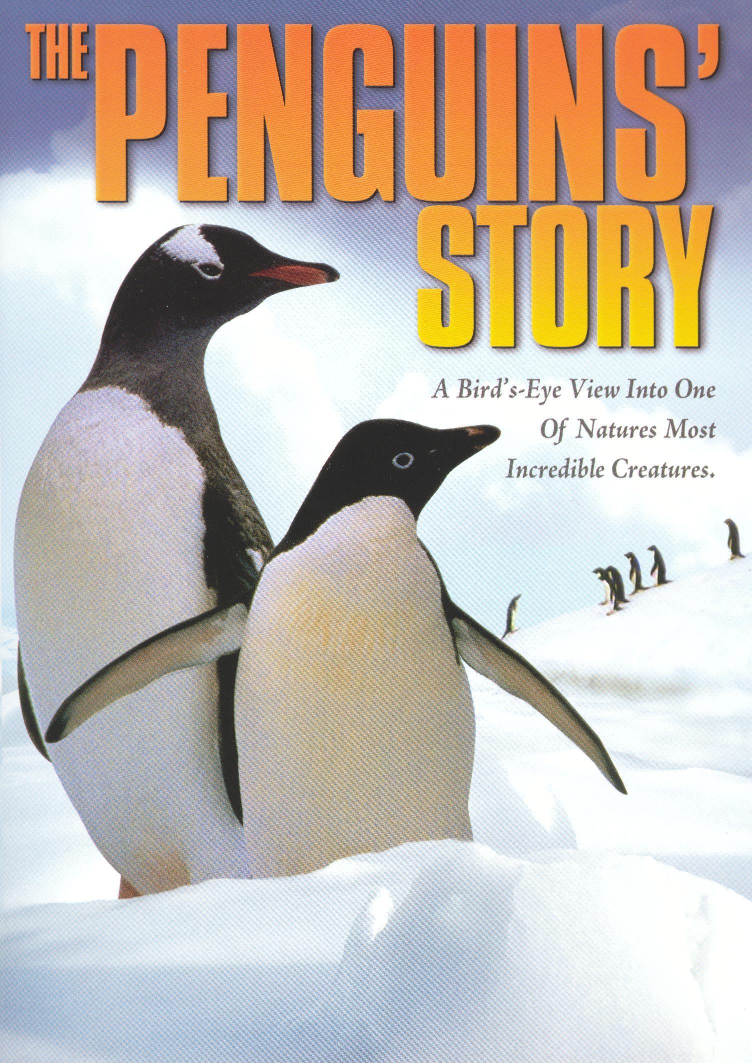 The Penguins' Journey