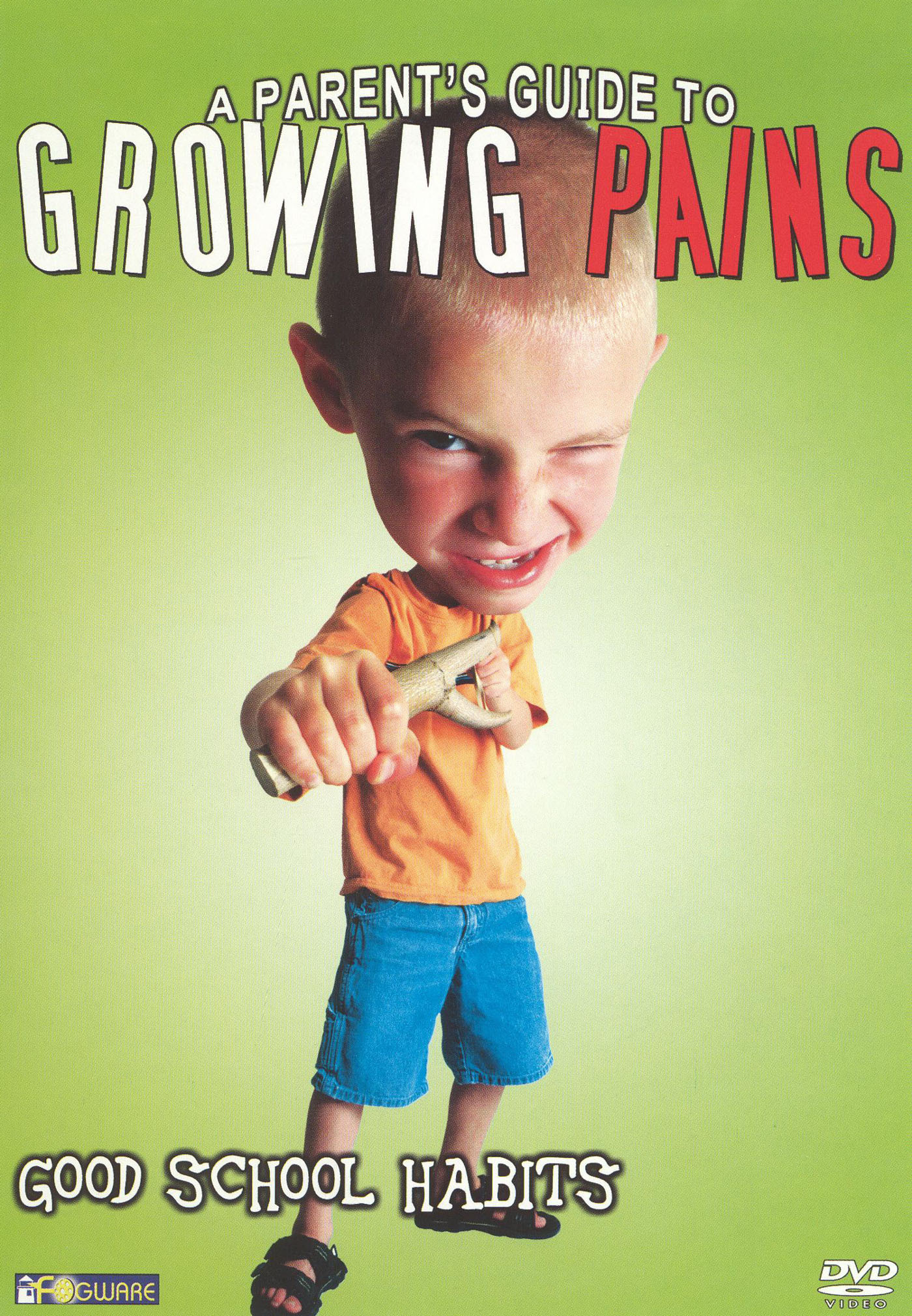A Parent's Guide to Growing Pains: Good Study Habits
