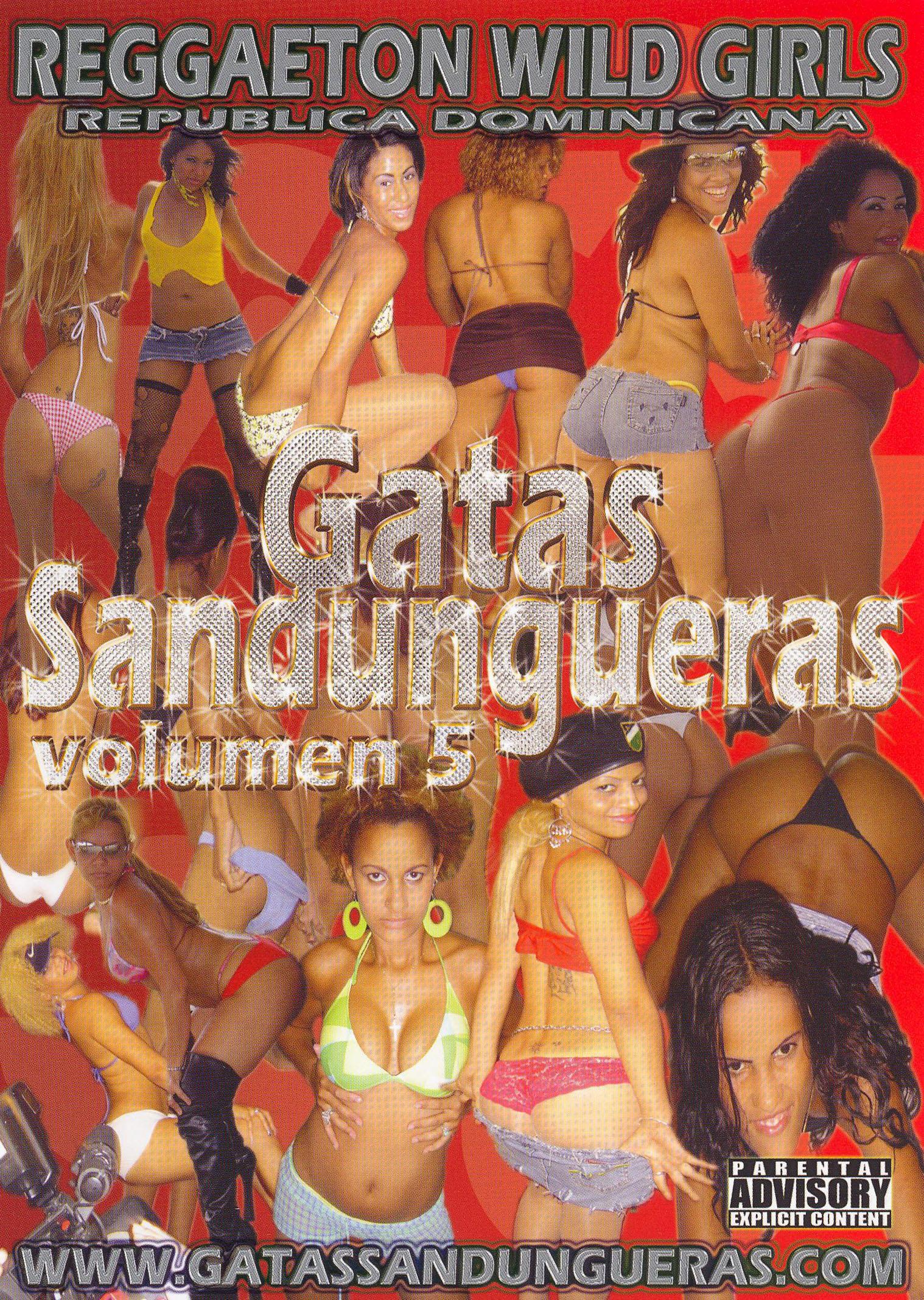 Gatas Sandungueras, Vol. 5: Reggaeton Wild Girls