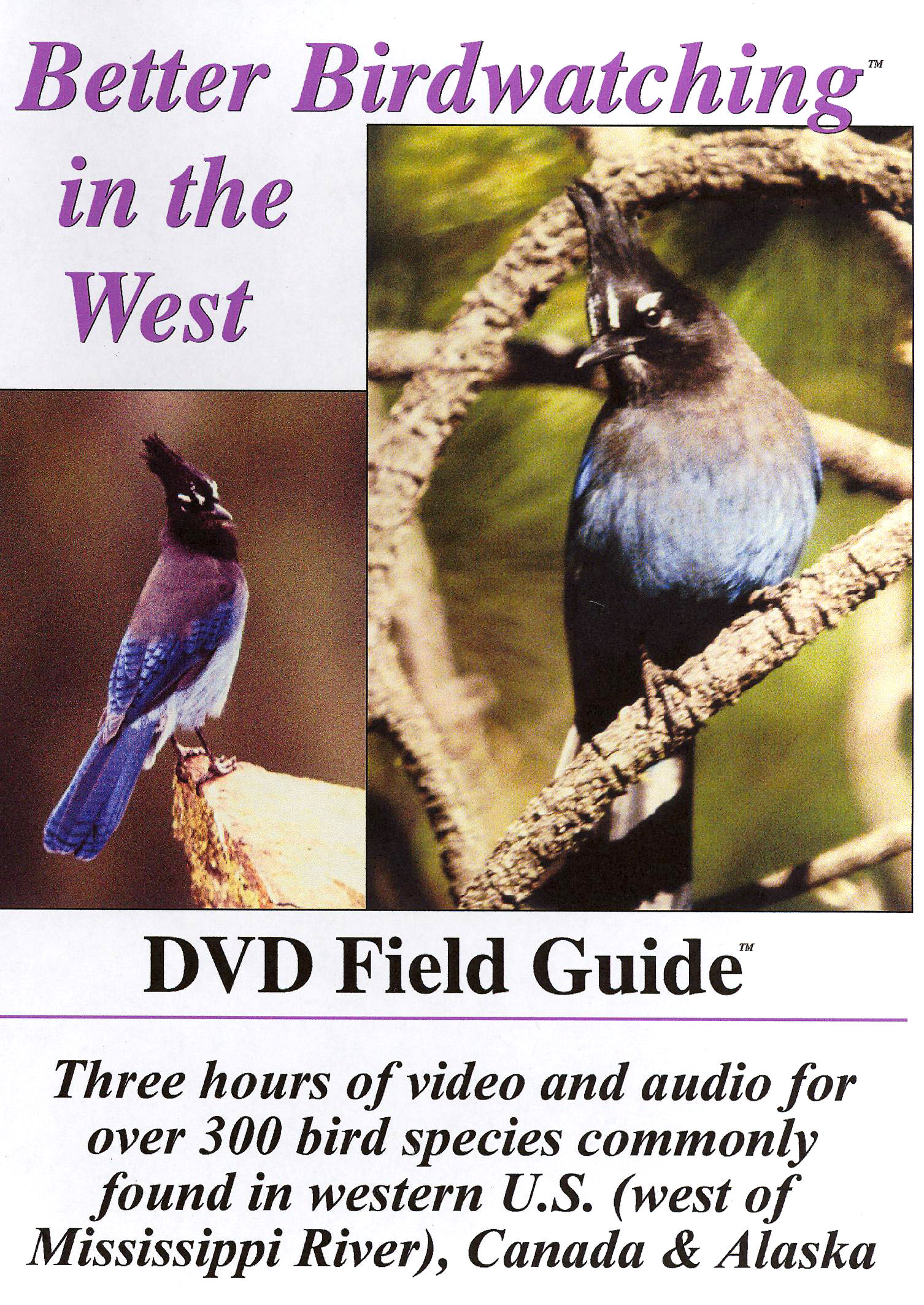 Better Birdwatching in the West