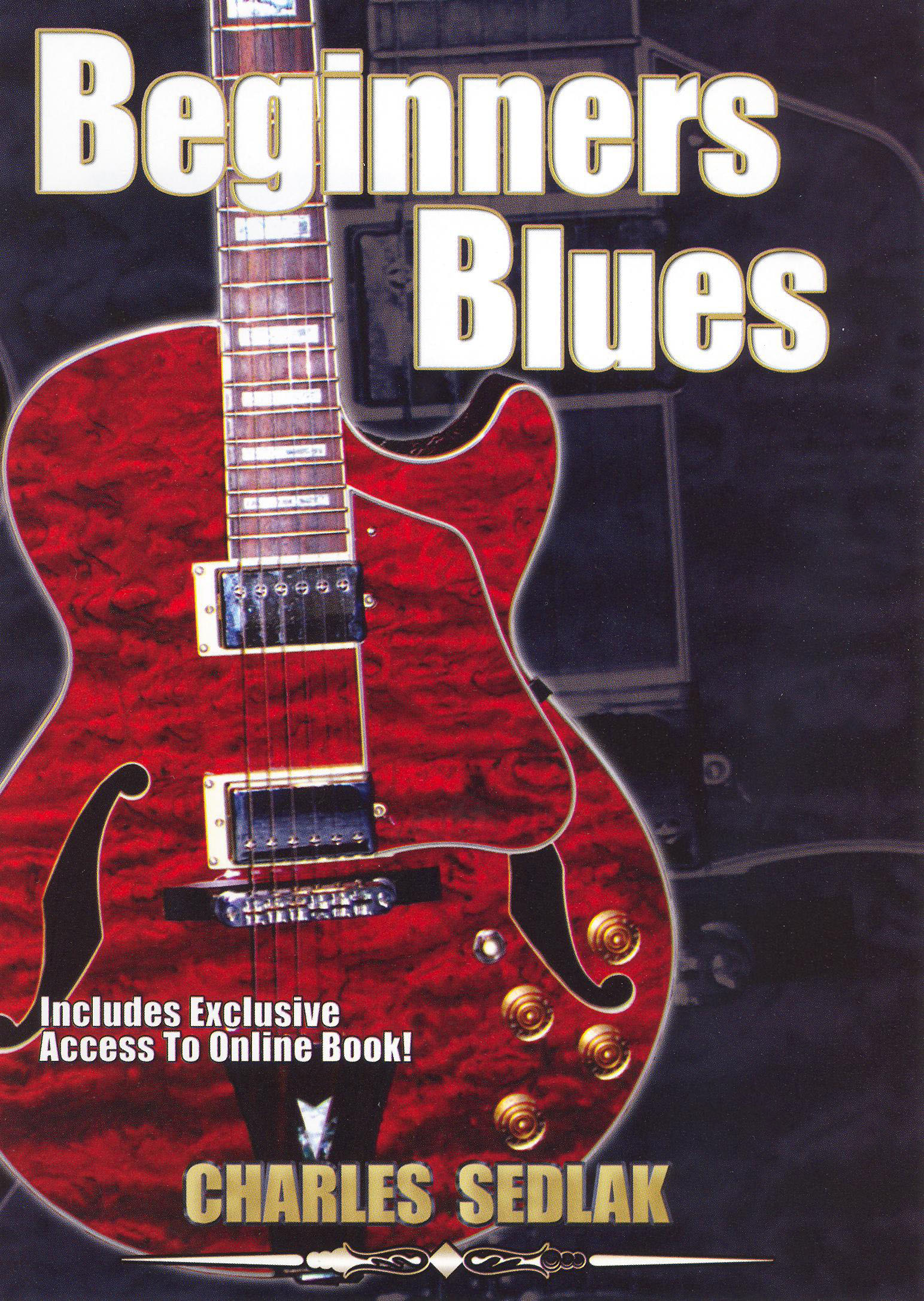 Charles Sedlak: Beginners Blues Guitar