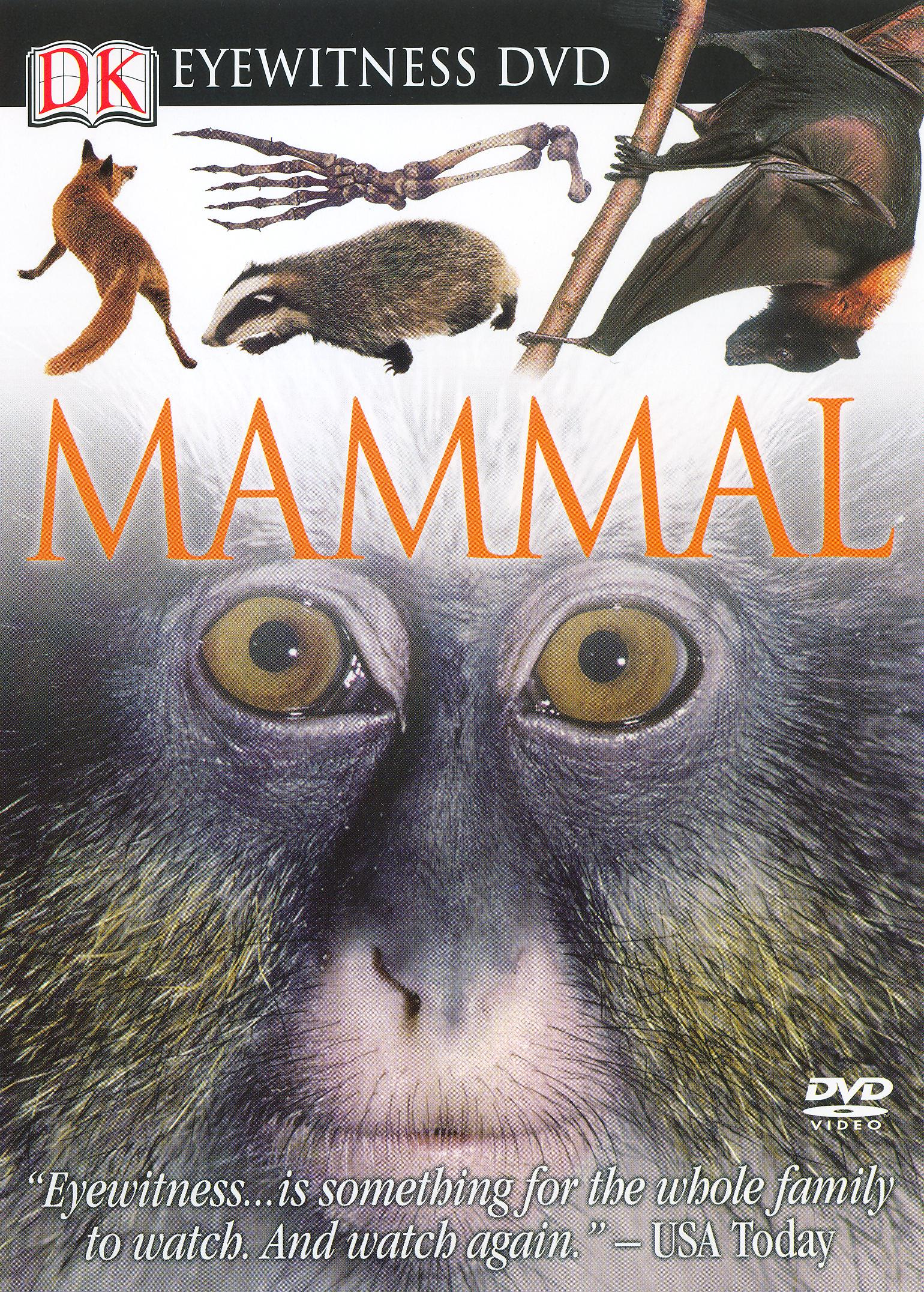 Eyewitness: Mammal (1999)