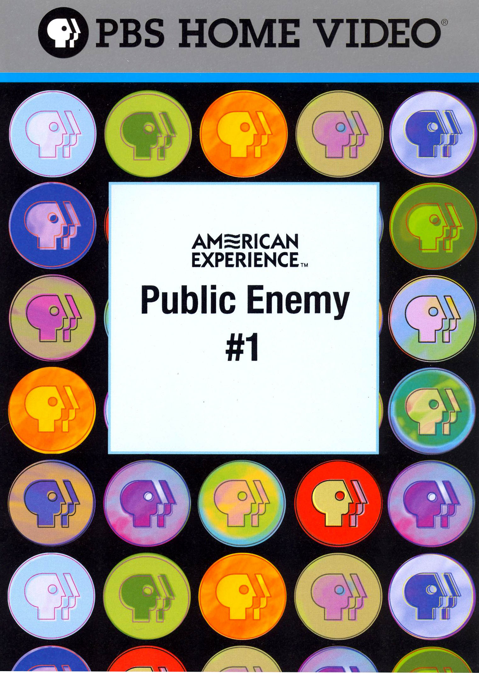 American Experience: Public Enemy #1