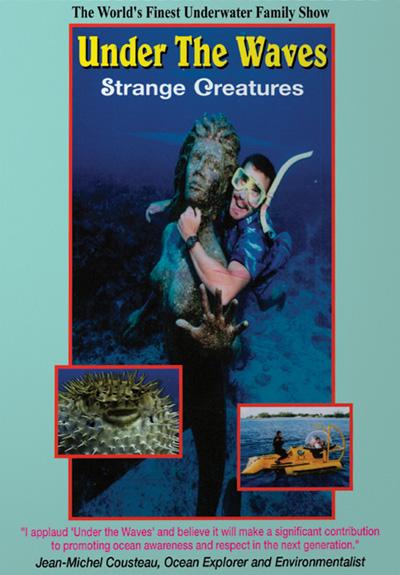 Under the Waves: Strange Creatures