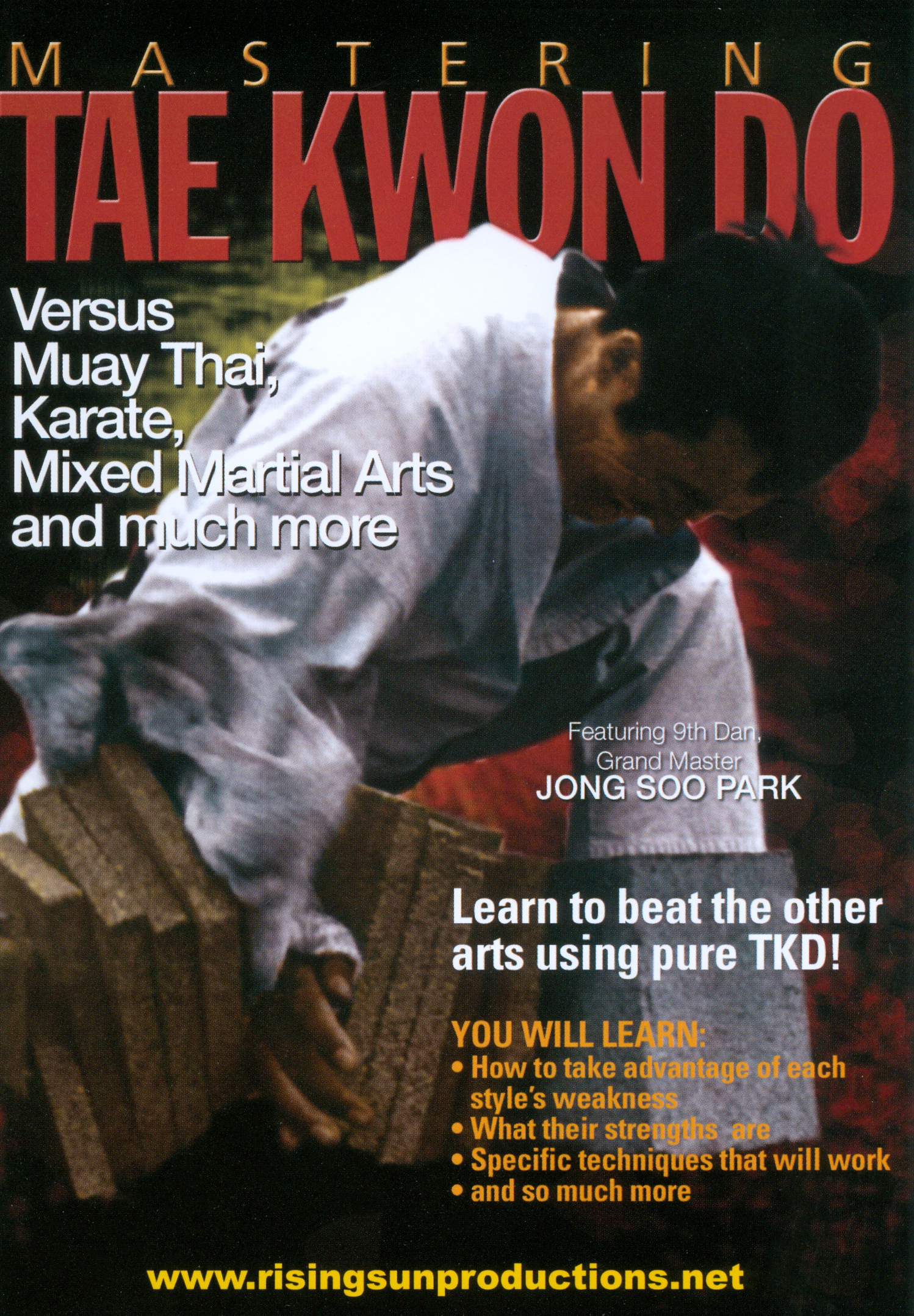 Mastering Tae Kwon Do: Versus Muay Thai, Karate, Mixed Martial Arts and Much More