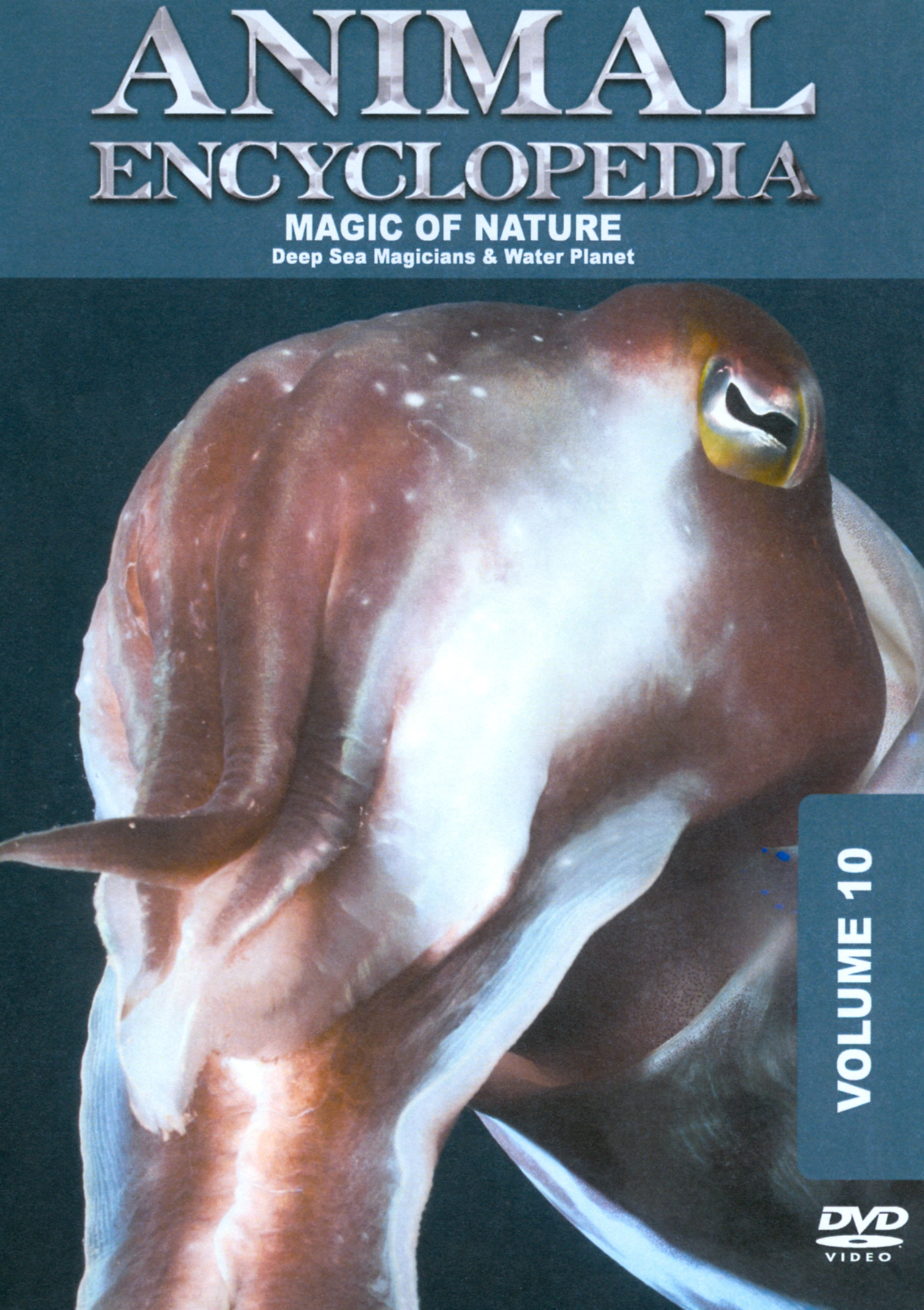 Animal Encyclopedia, Vol. 10: Deep Sea Magicians and Water Planet