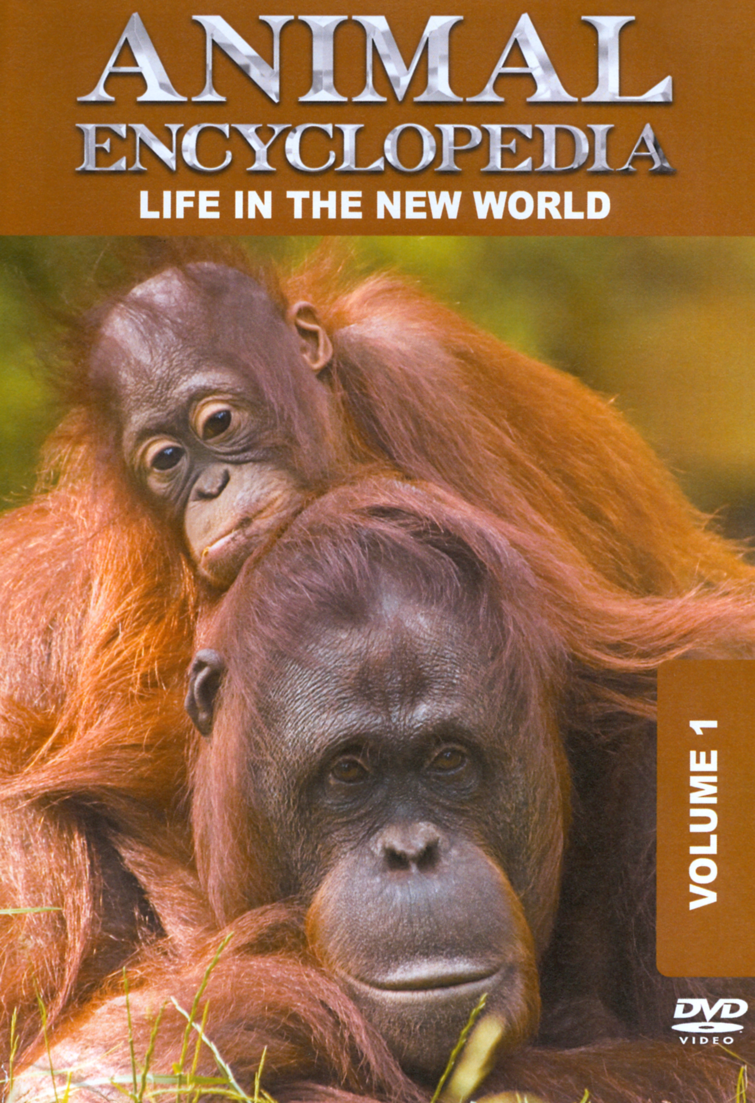 Animal Encyclopedia, Vol. 1: Life in the New World
