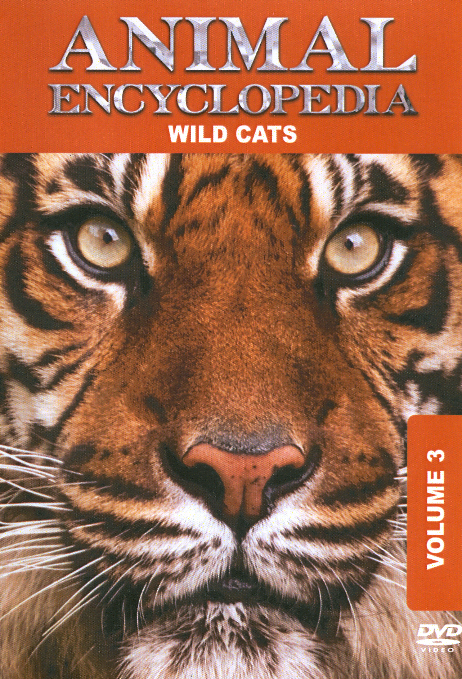 Animal Encyclopedia, Vol. 3: Wild Cats