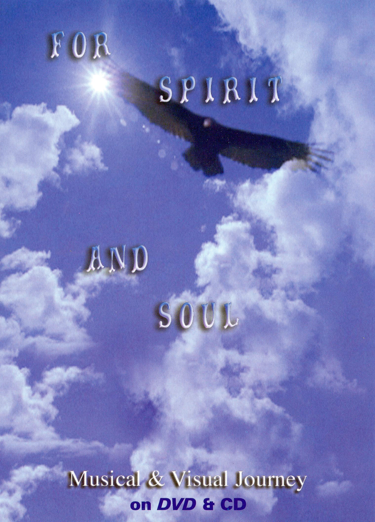 David and the High Spirits: Music For Spirit and Soul
