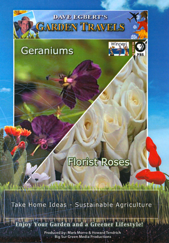 Dave Egbert's Garden Travels: Geraniums/Florist Roses