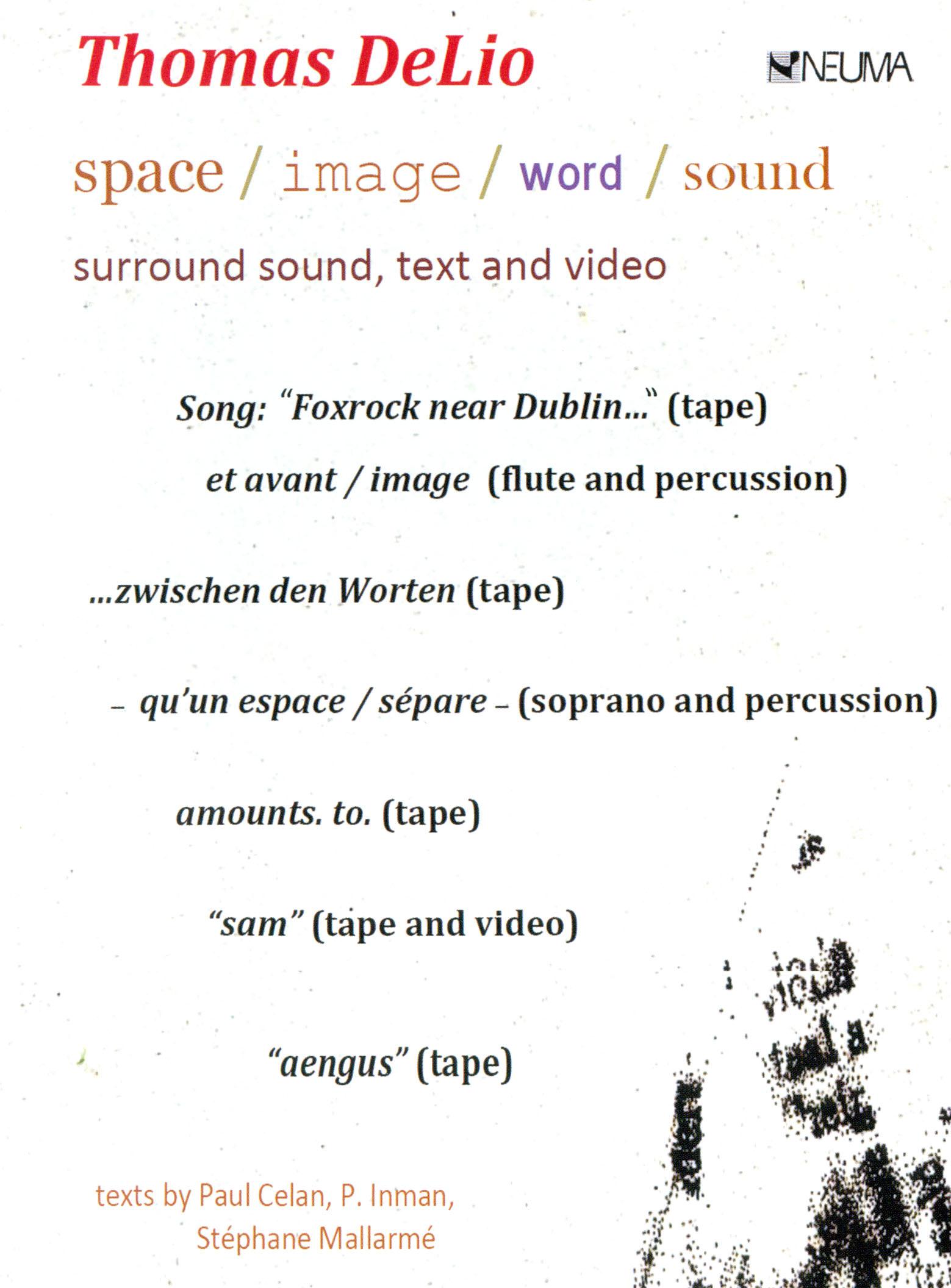 Thomas DeLio: Space/Image/Word/Sound