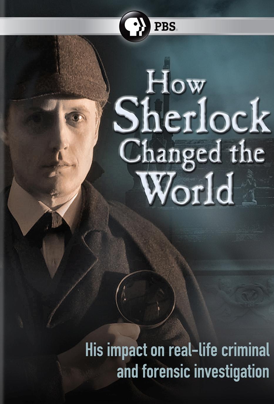 How Sherlock Changed the World
