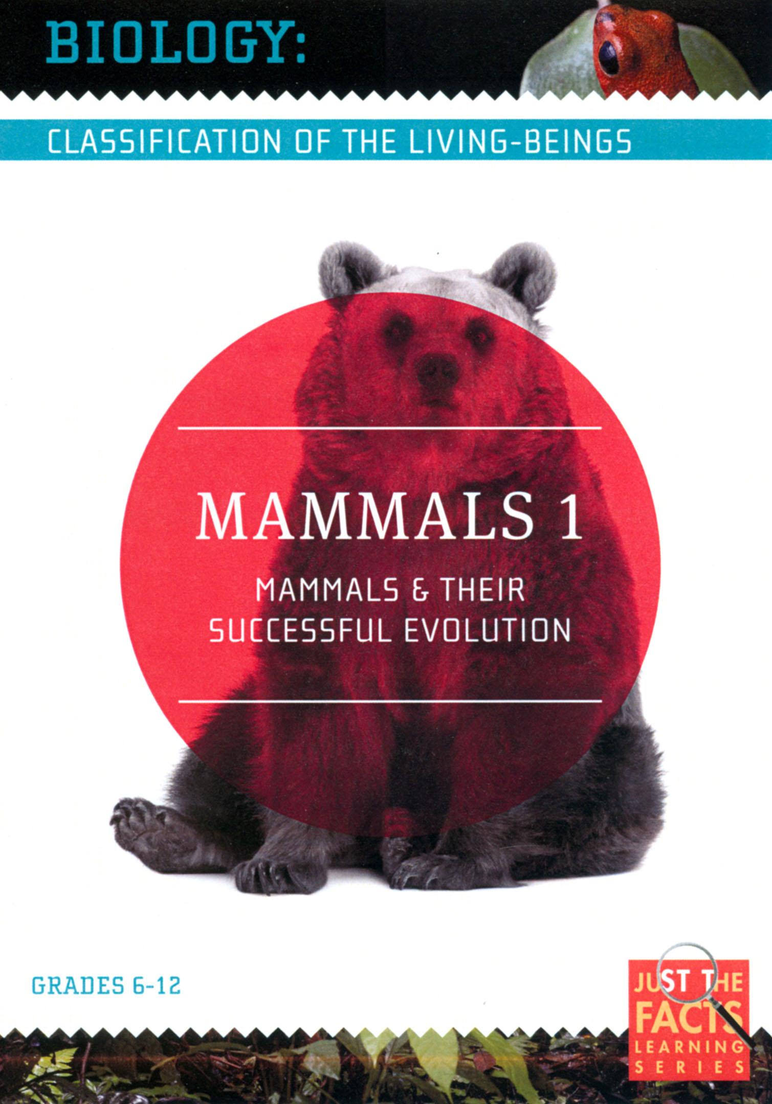 Biology Classification: Mammals, Vol. 1