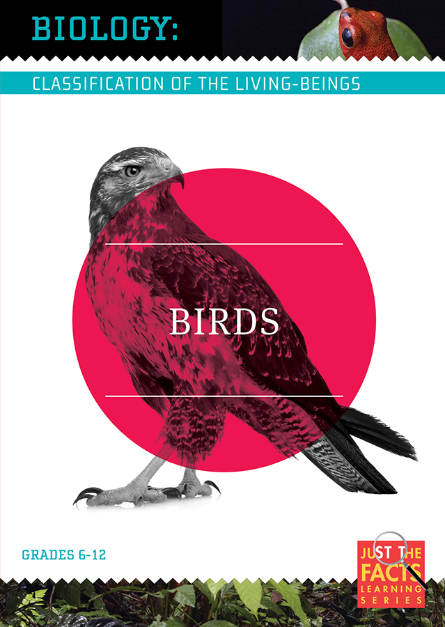 Biology Classification: Birds