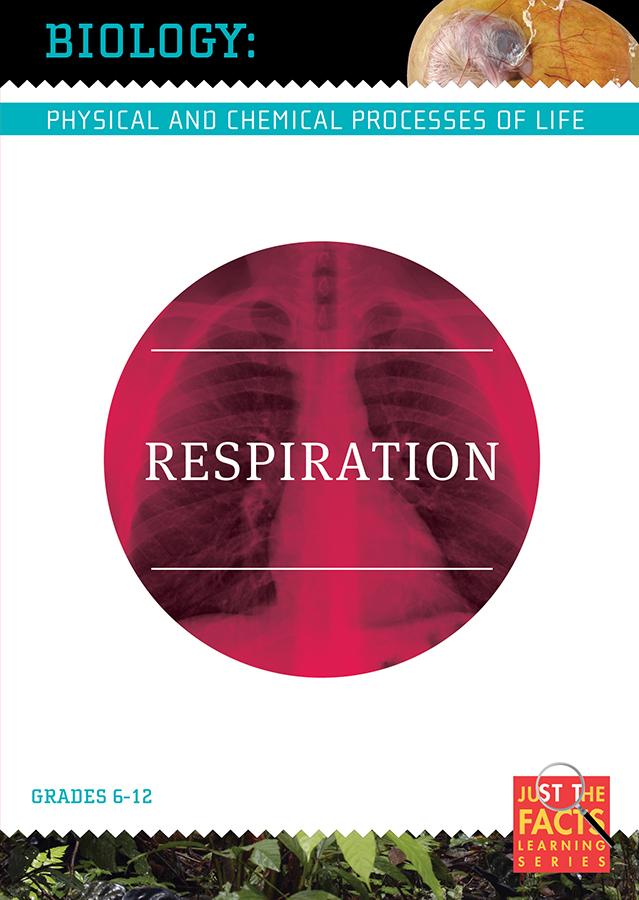 Biology Basics: Respiration