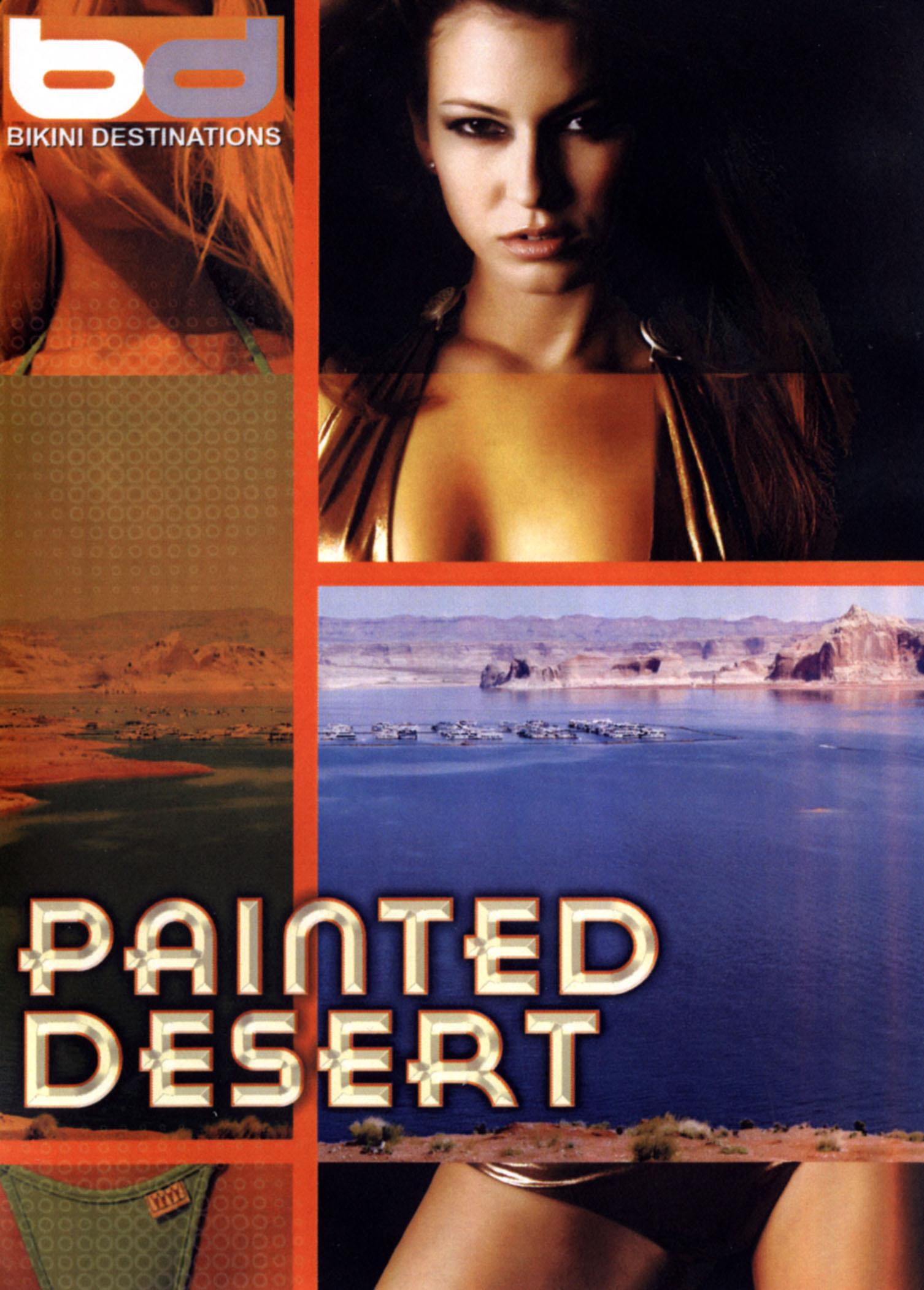 Bikini Destinations: Painted Desert