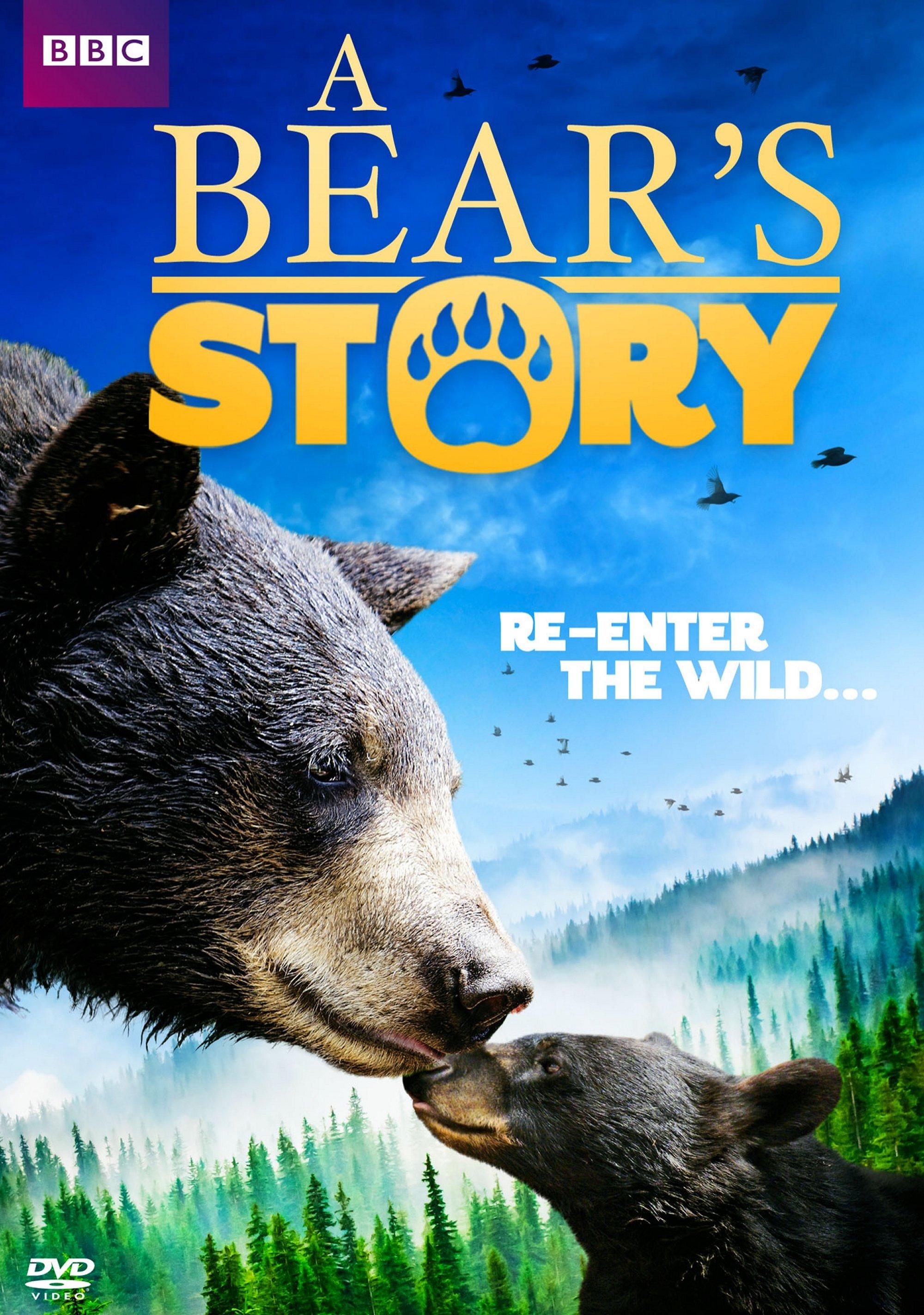 A Bear Story: Spirit's Adventure