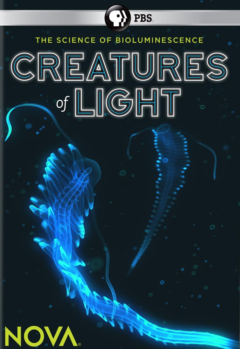 NOVA: Creatures of Light