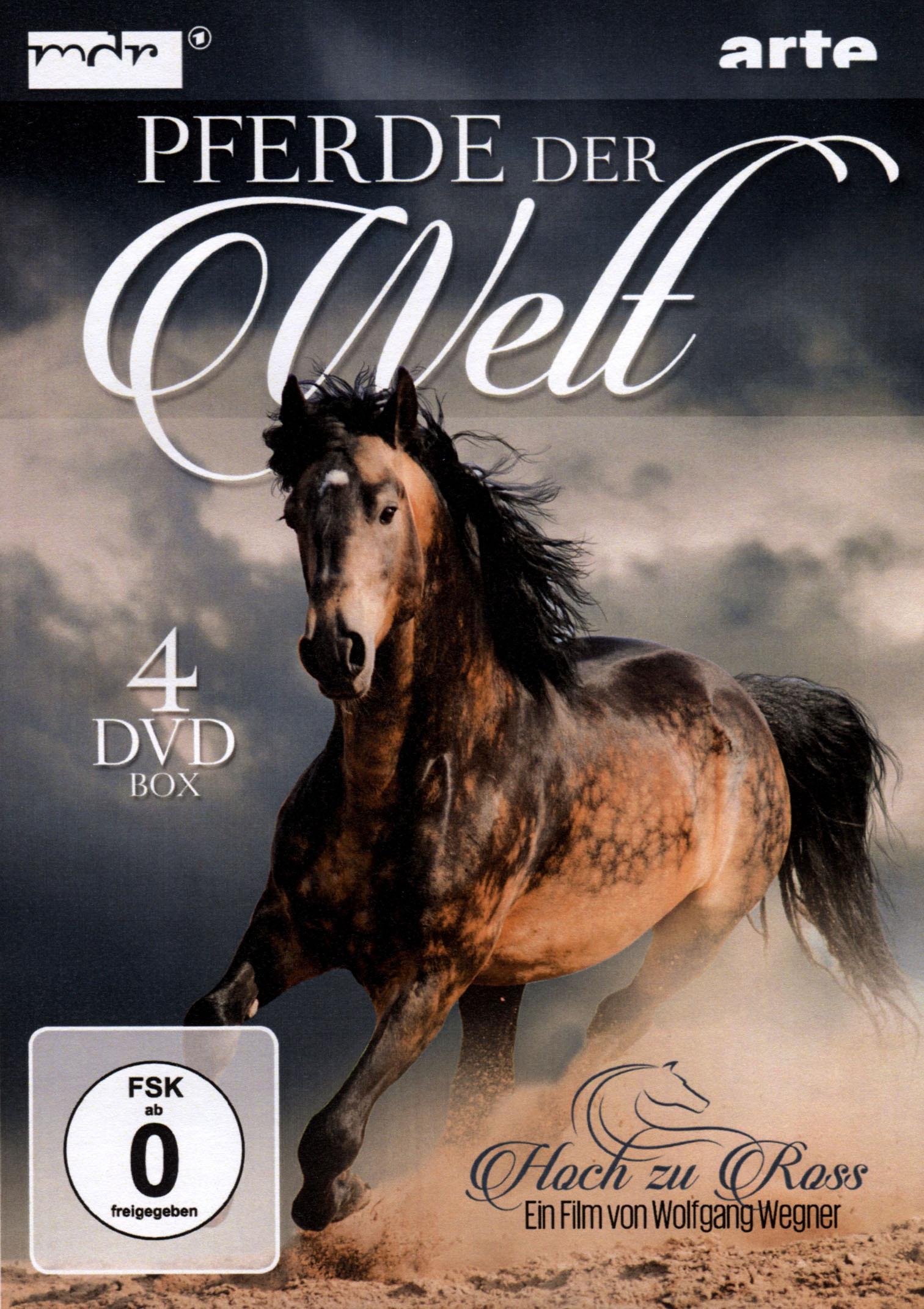 Pferde der Welt: Hoch zu Ross