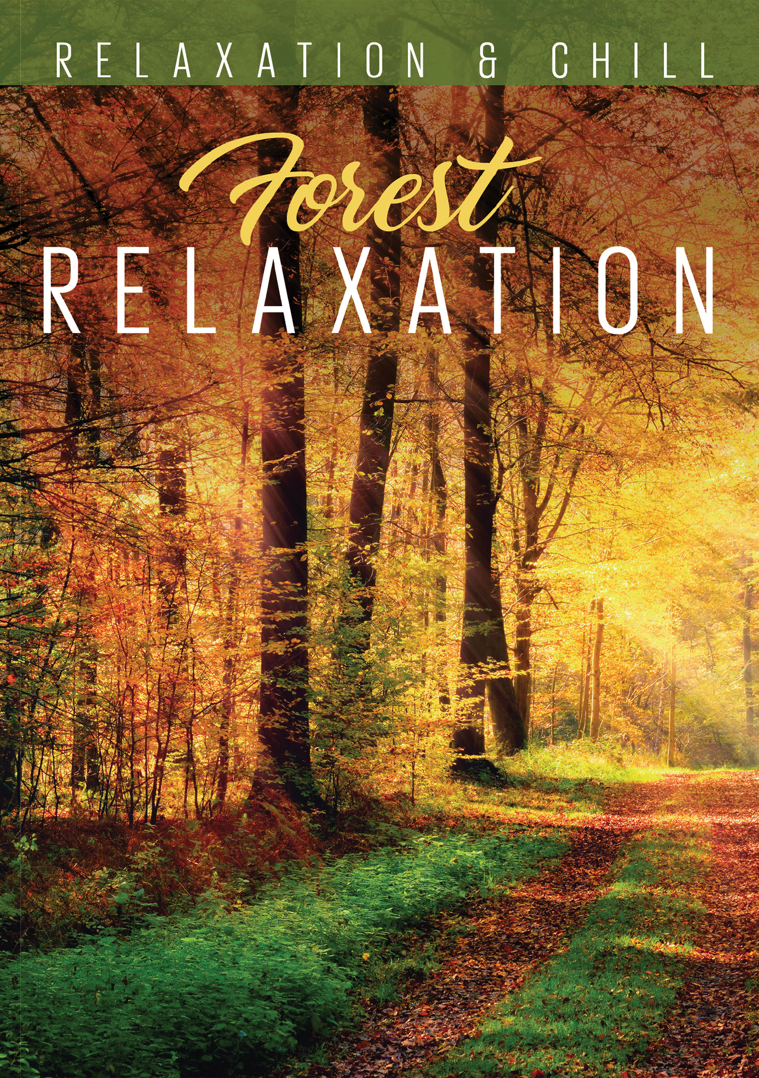 Relaxation & Chill: Forest Relaxation