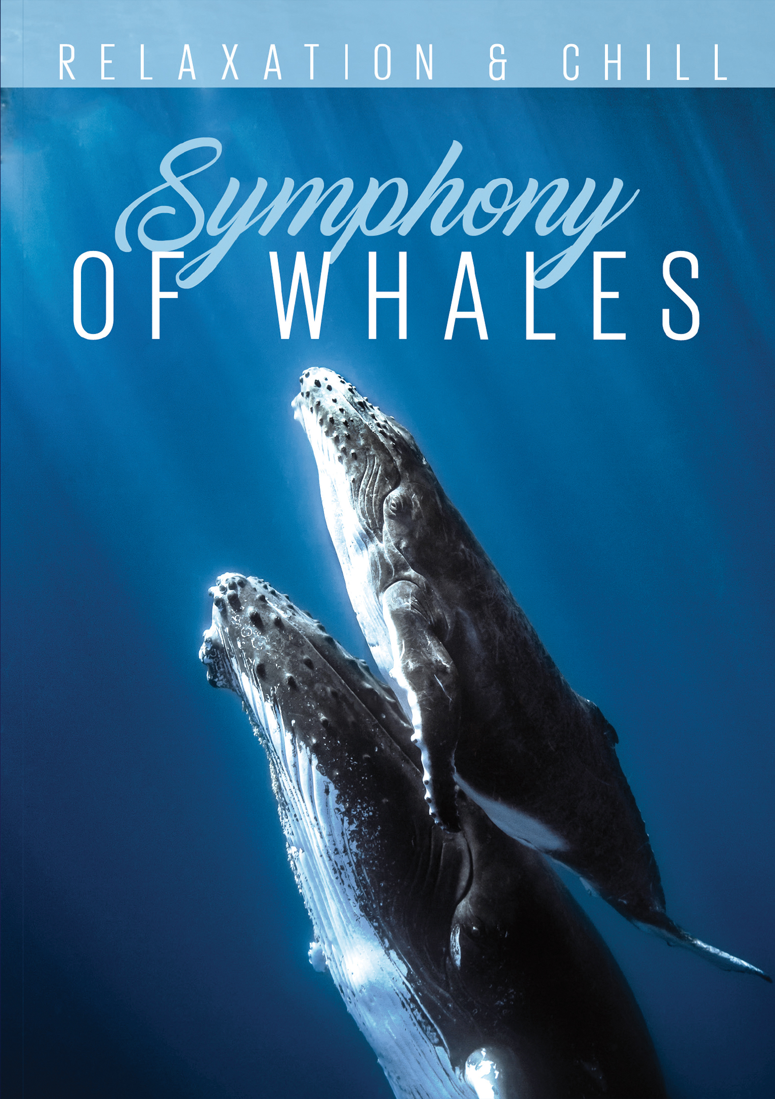 Relaxation & Chill: Symphony of Whales