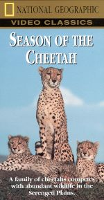 National Geographic: Season of the Cheetah