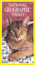 National Geographic: Cats - Caressing the Tiger