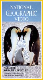 National Geographic: Antarctic Wildlife Adventure