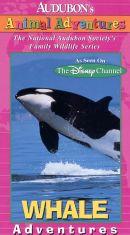 Audubon's Animal Adventures: Whale