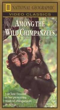 National Geographic: Among the Wild Chimpanzees