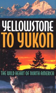 Yellowstone to Yukon: The Wild Heart of North America
