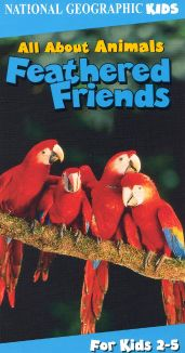 All About Animals: Feathered Friends